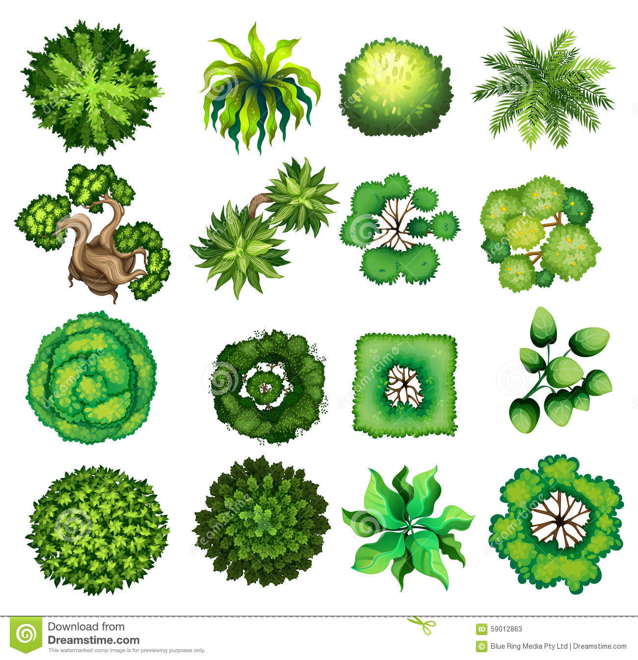 garden design with topview of the different plants stock illustration image with vegetable garden design