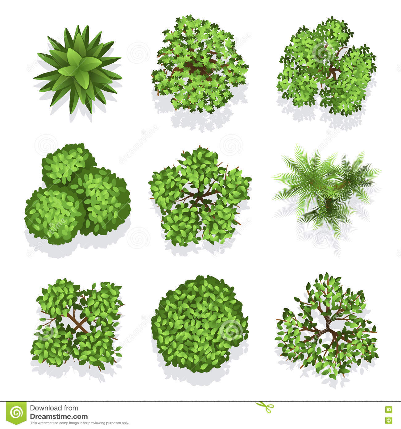 Top view different plants and trees vector set for for Different garden plants