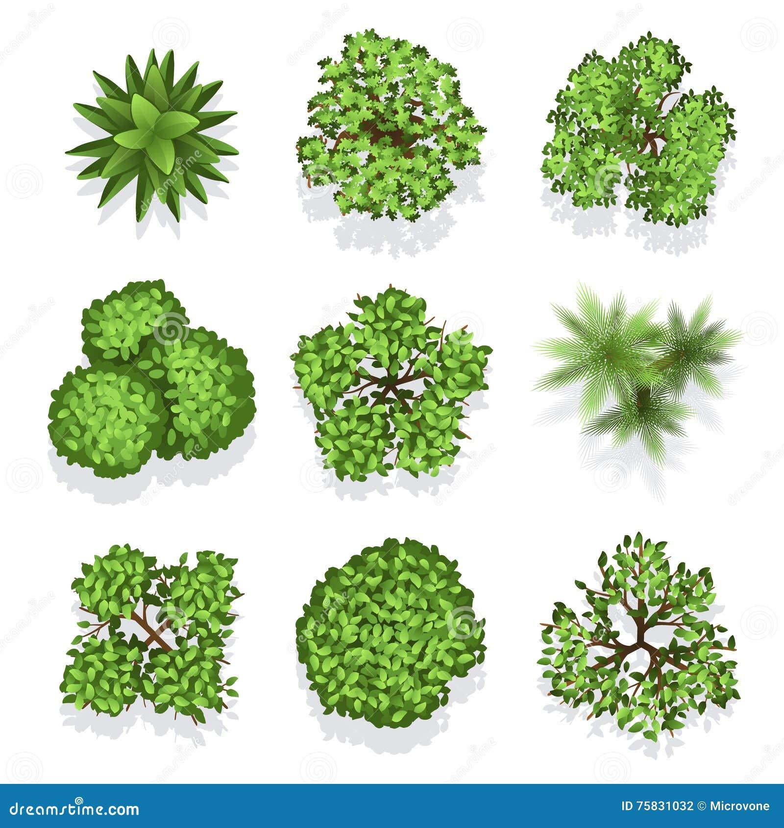 Branch cartoons illustrations vector stock images for Different landscape design