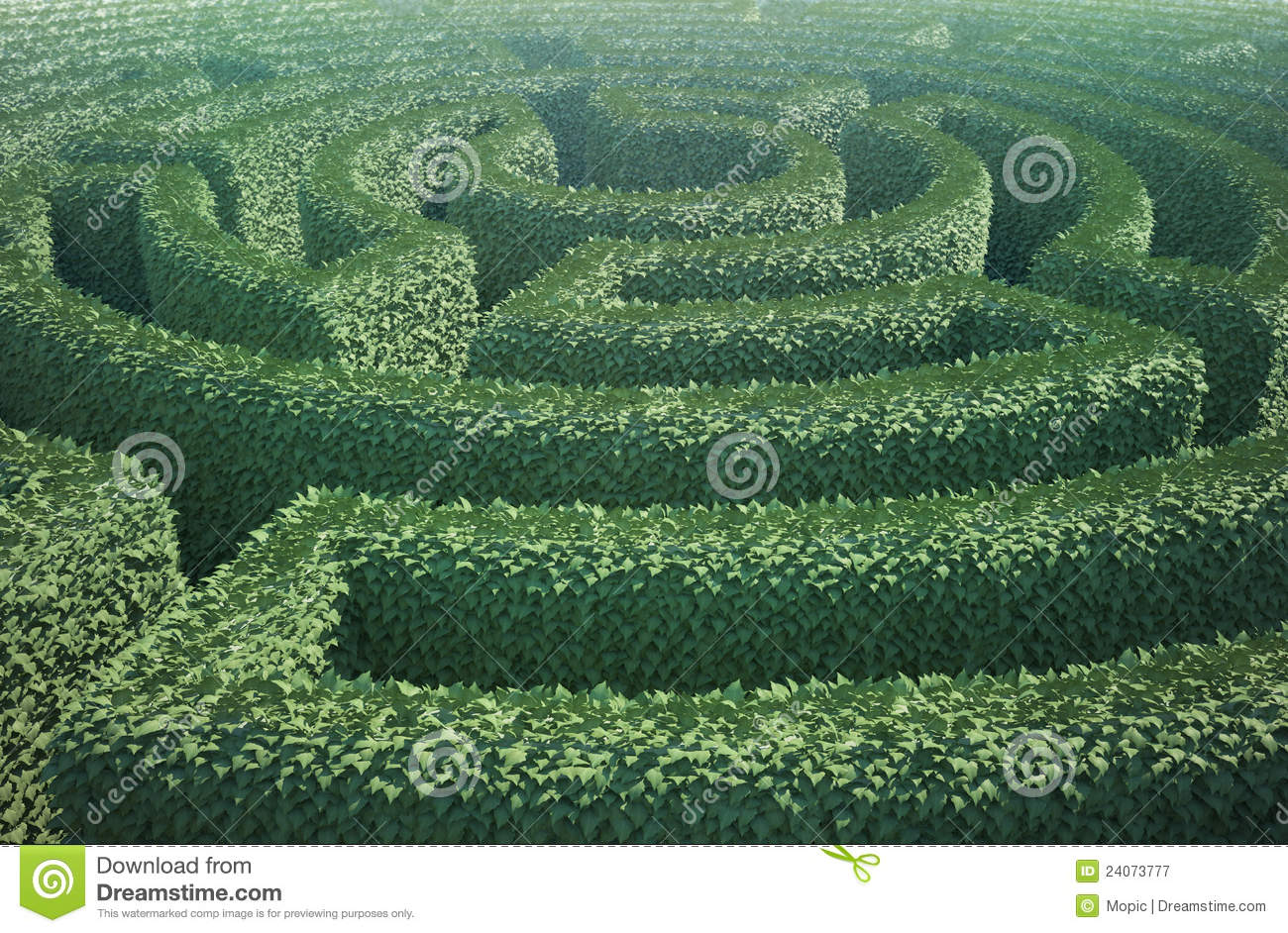 Top View Of A Garden Maze Stock Image Image Of Grass