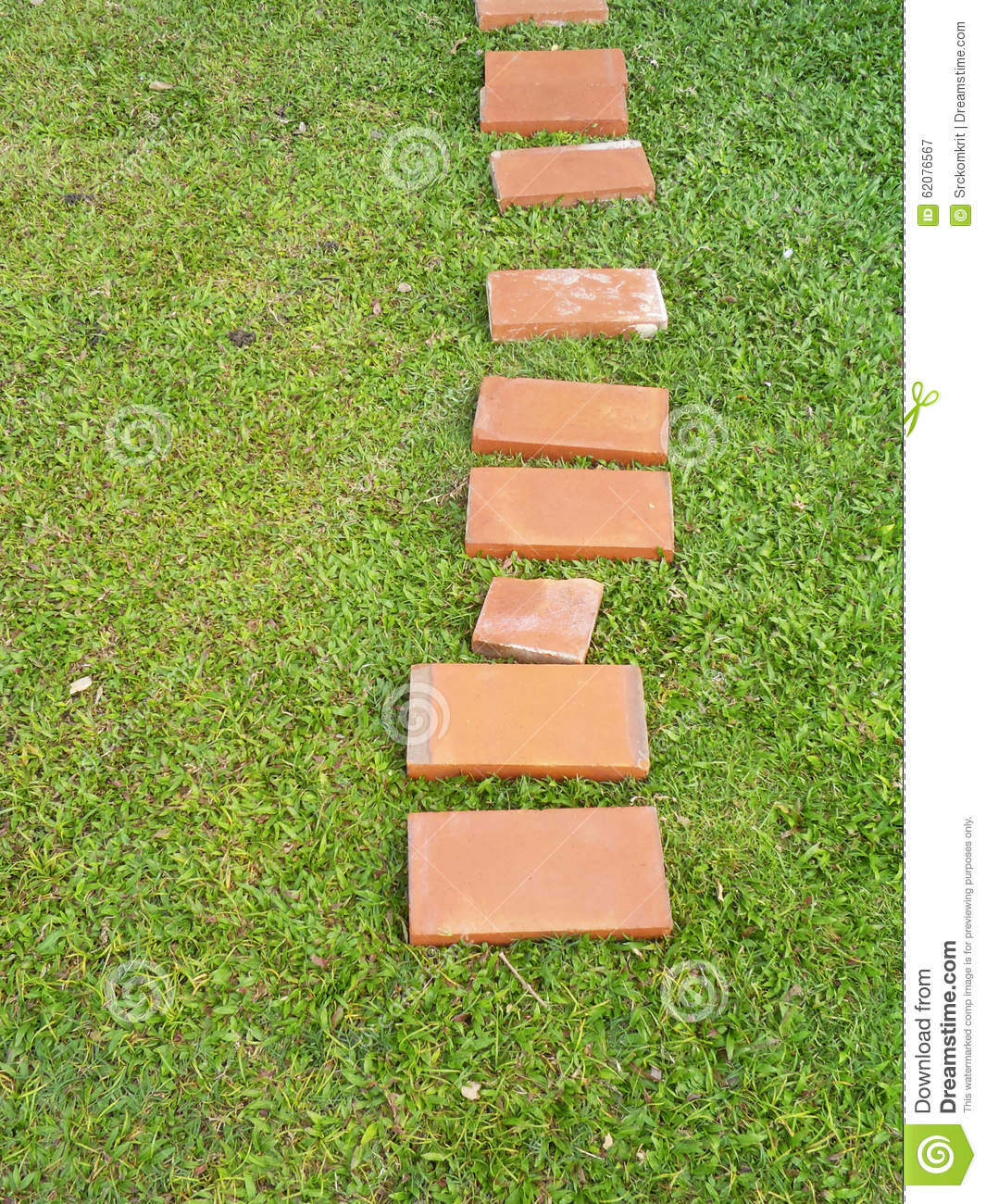 Download Top View Of Garden Pathway Stock Image. Image Of Design   62076567