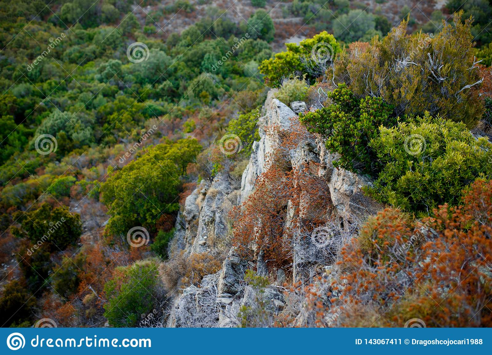 Top view of a great cliffs of the mountainous terrain and coastal Corsica island, France