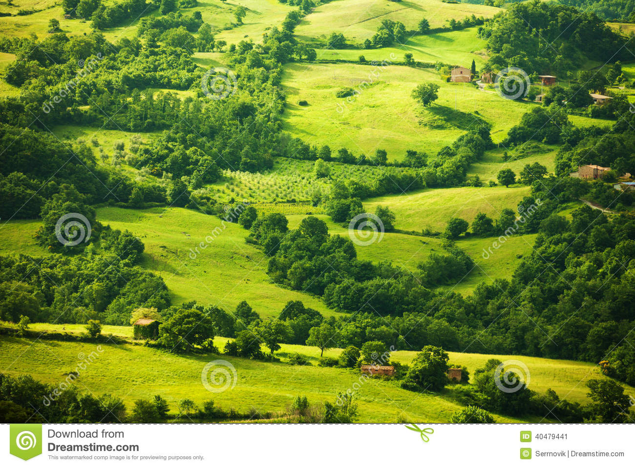 Top View On Green Tuscany Landscape Italy Stock Image