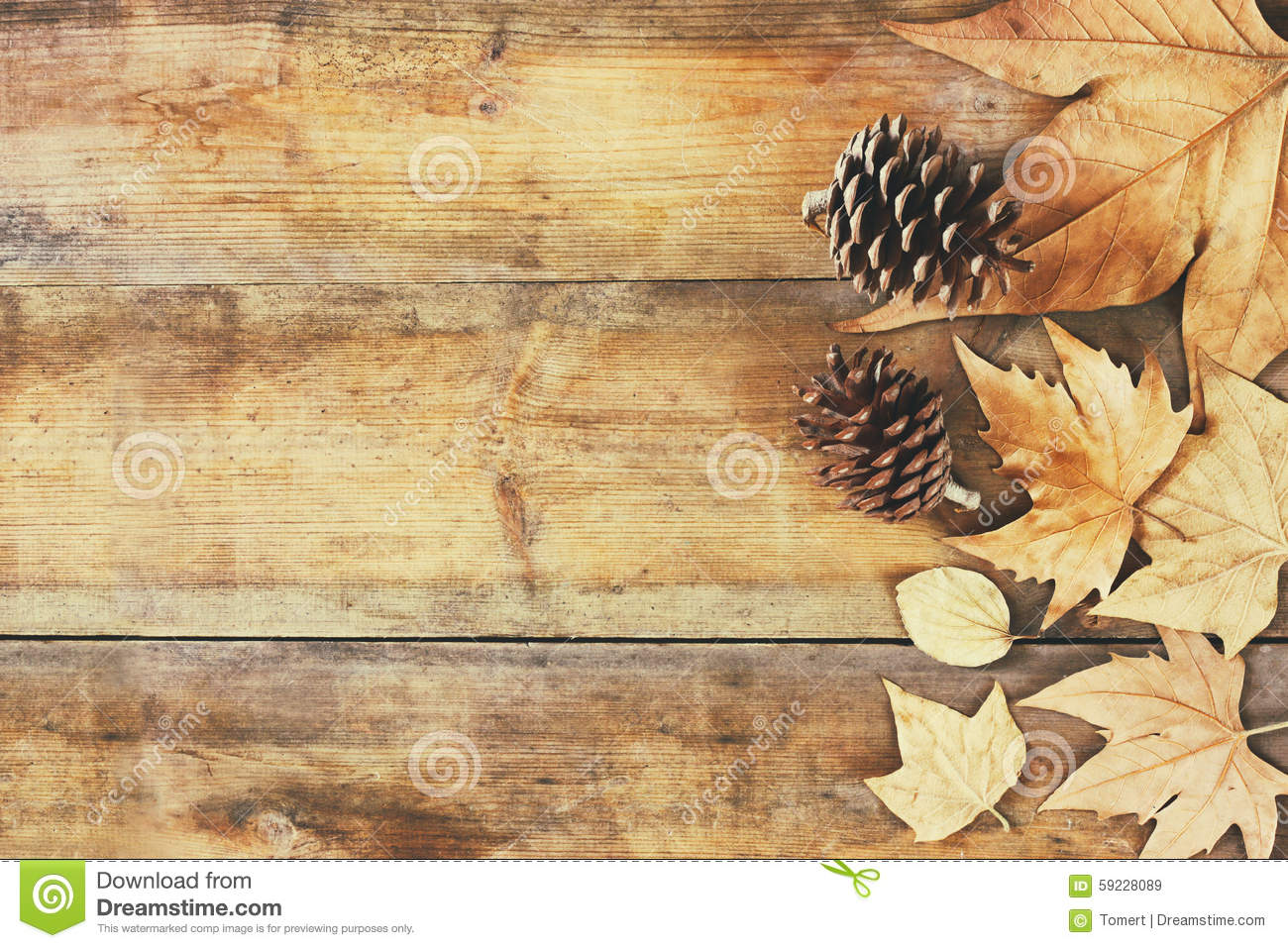 Top View Image Of Autumn Leaves And Pine Cones Over Wooden