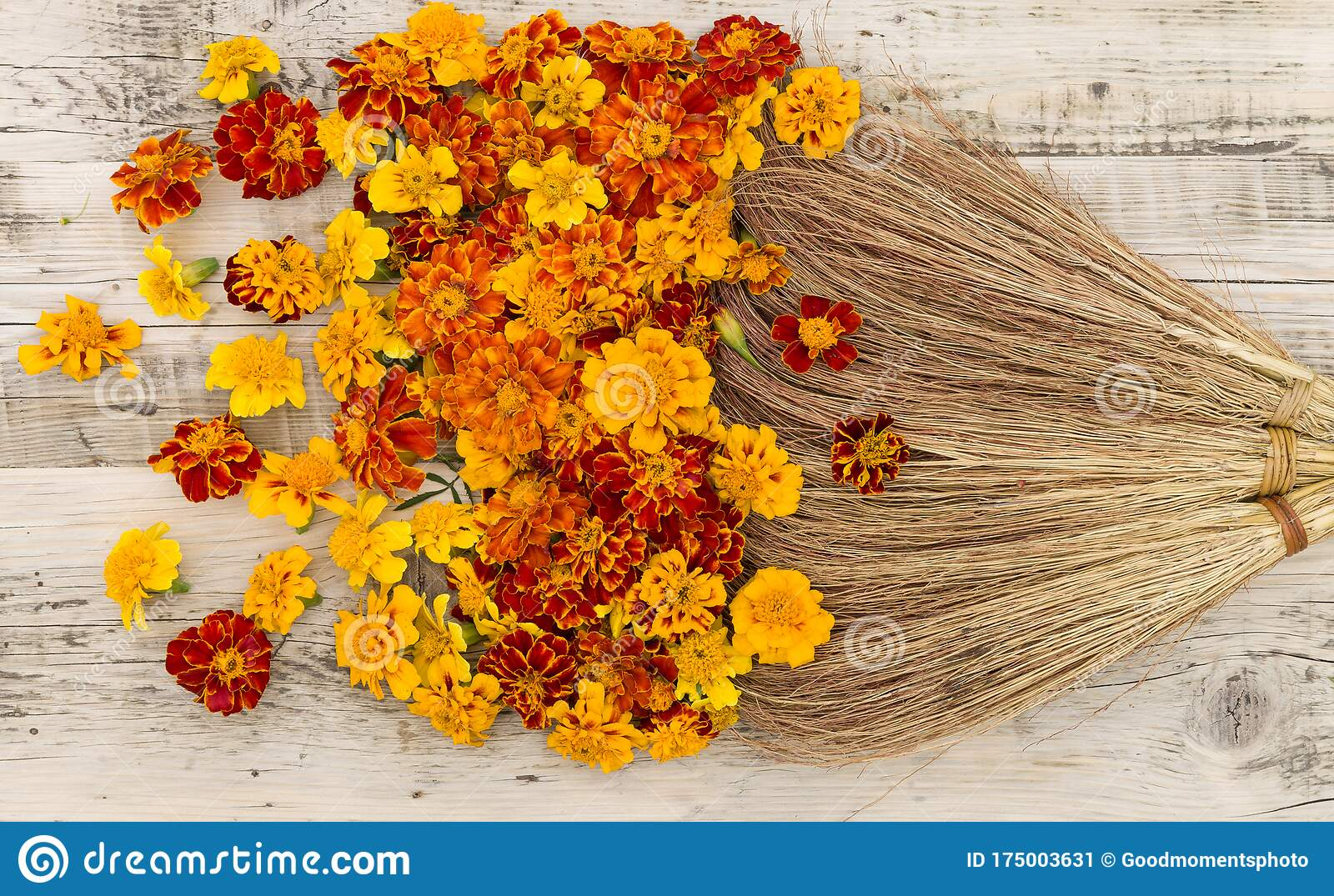 Top View On Old Styled Broom Sweeping Yellow Orange Amd Red Flowers On Wooden Background Marigolds Stock Image Image Of Offering Beauty 175003631