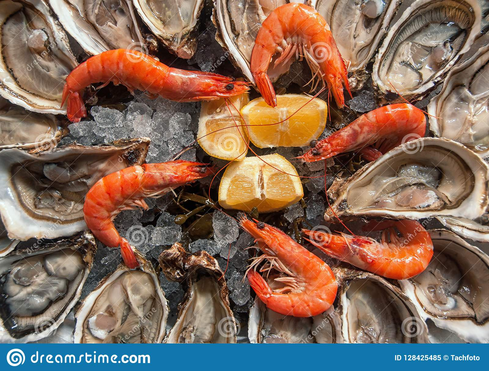 Top view oysters background with Open Oysters with shrimps and l