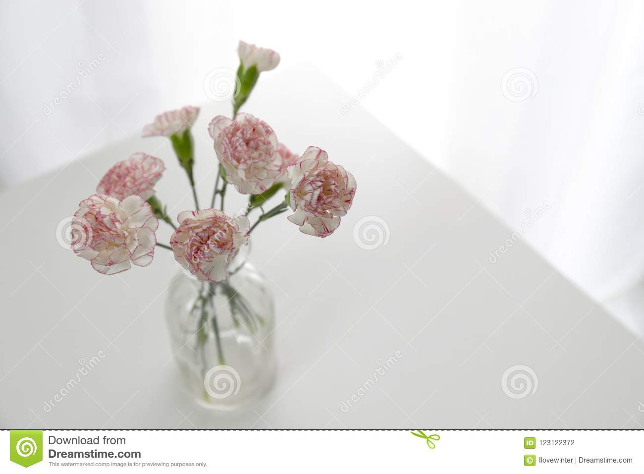 top view of pink and white carnation flowers vase stock photo