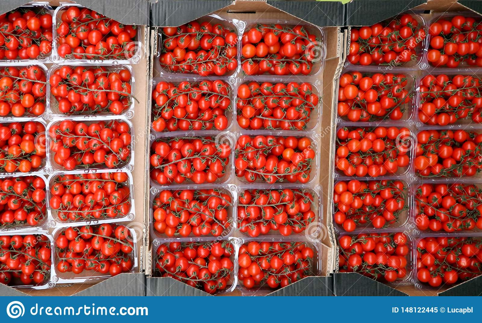 Top view of several plastic containers full of cherry tomatoes, at the vegetable market