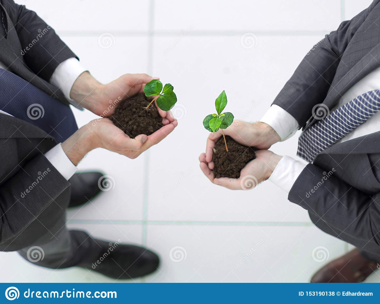 Top view.two smiling businessmen with a green sprout