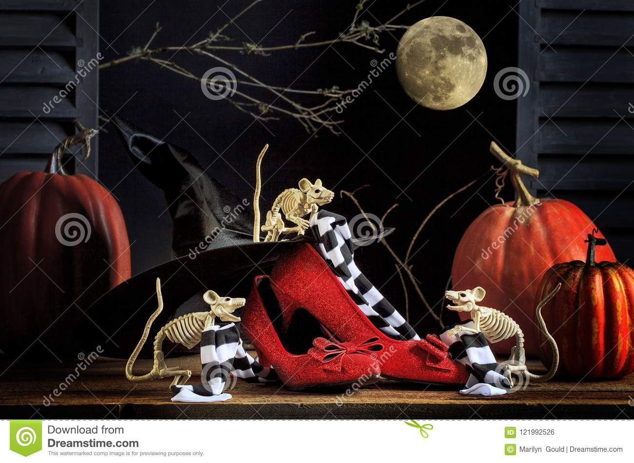 Topi Ruby Slippers Striped Stockings di Halloween