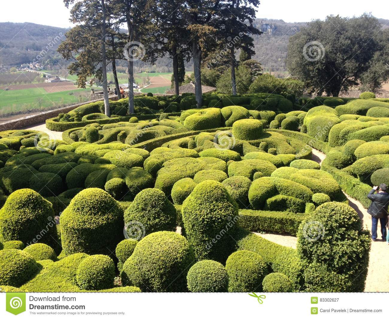 Image Of French Topiary How designers are using Topiary Knots and ...