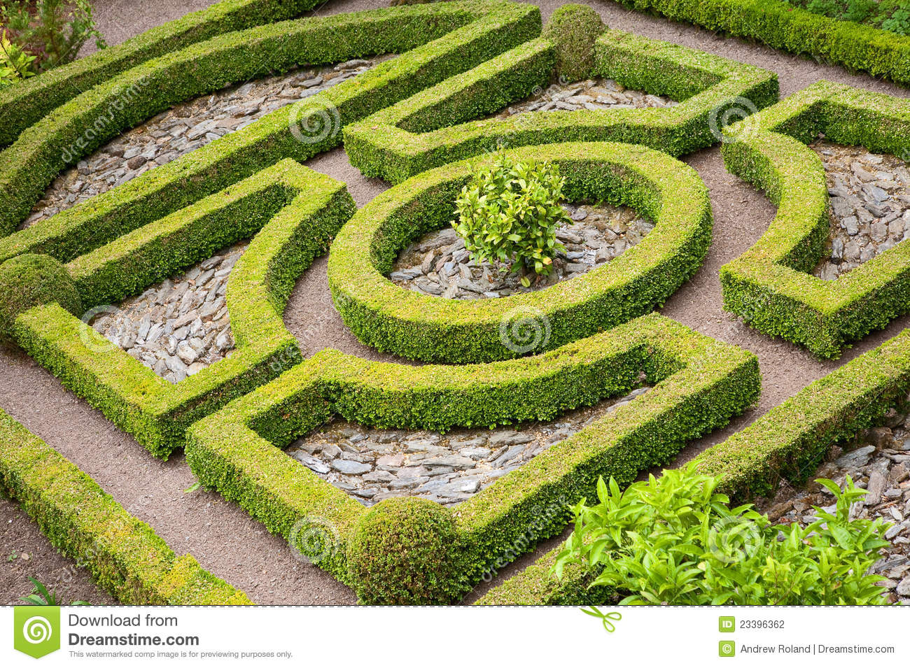 Topiary knot garden stock photography image 23396362 for English knot garden designs