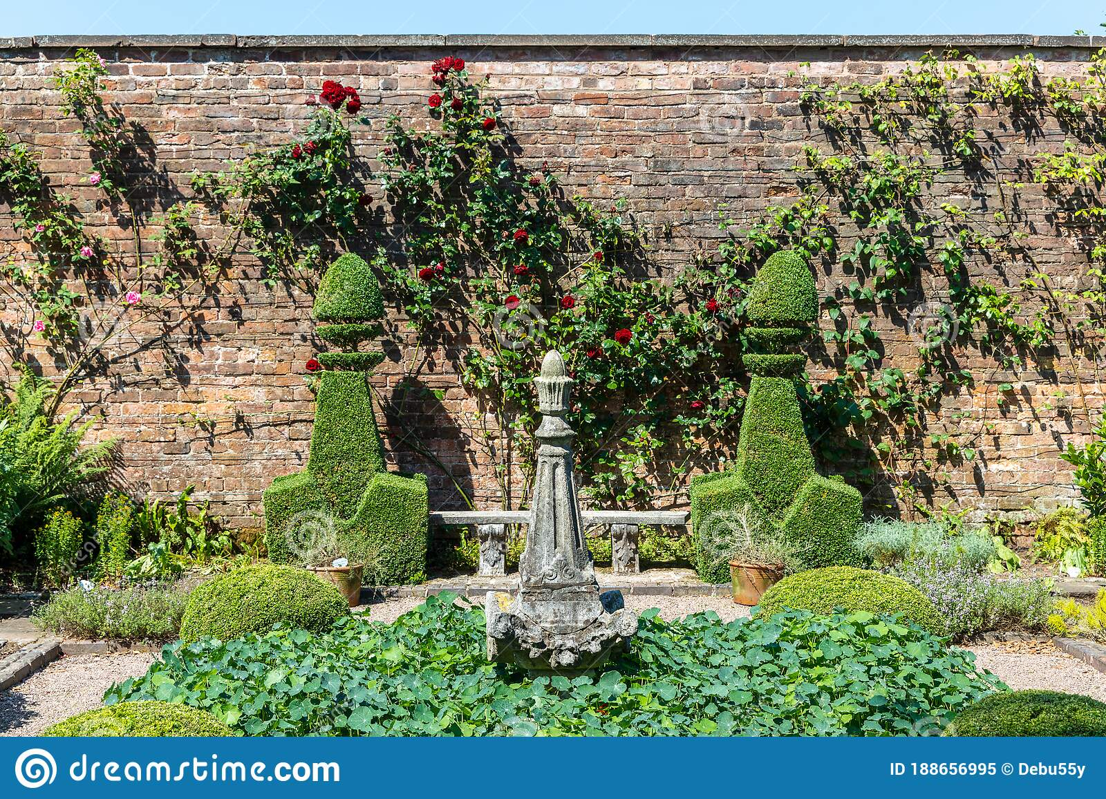 Small Topiary Garden With Espaliered Roses Against Brick Wall Stock Image Image Of Plant Natural 188656995