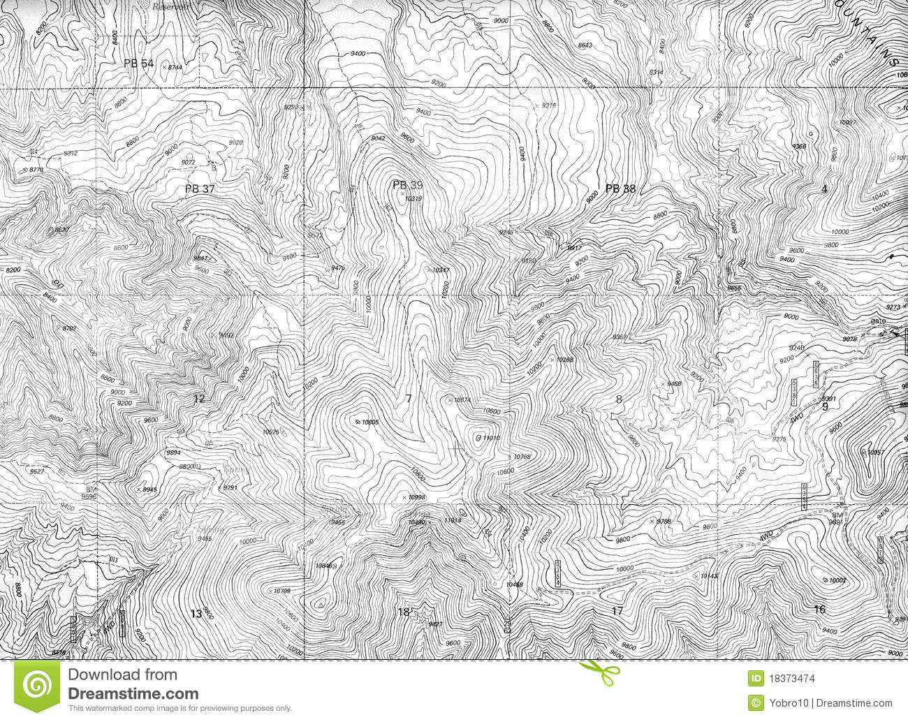 Topographical Map Pattern