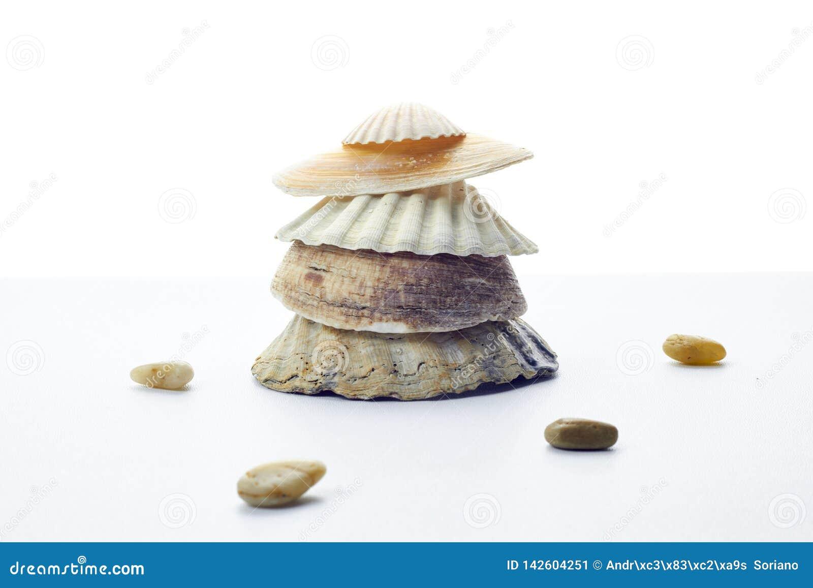 Toren die met shells op een witte achtergrond wordt gemaakt