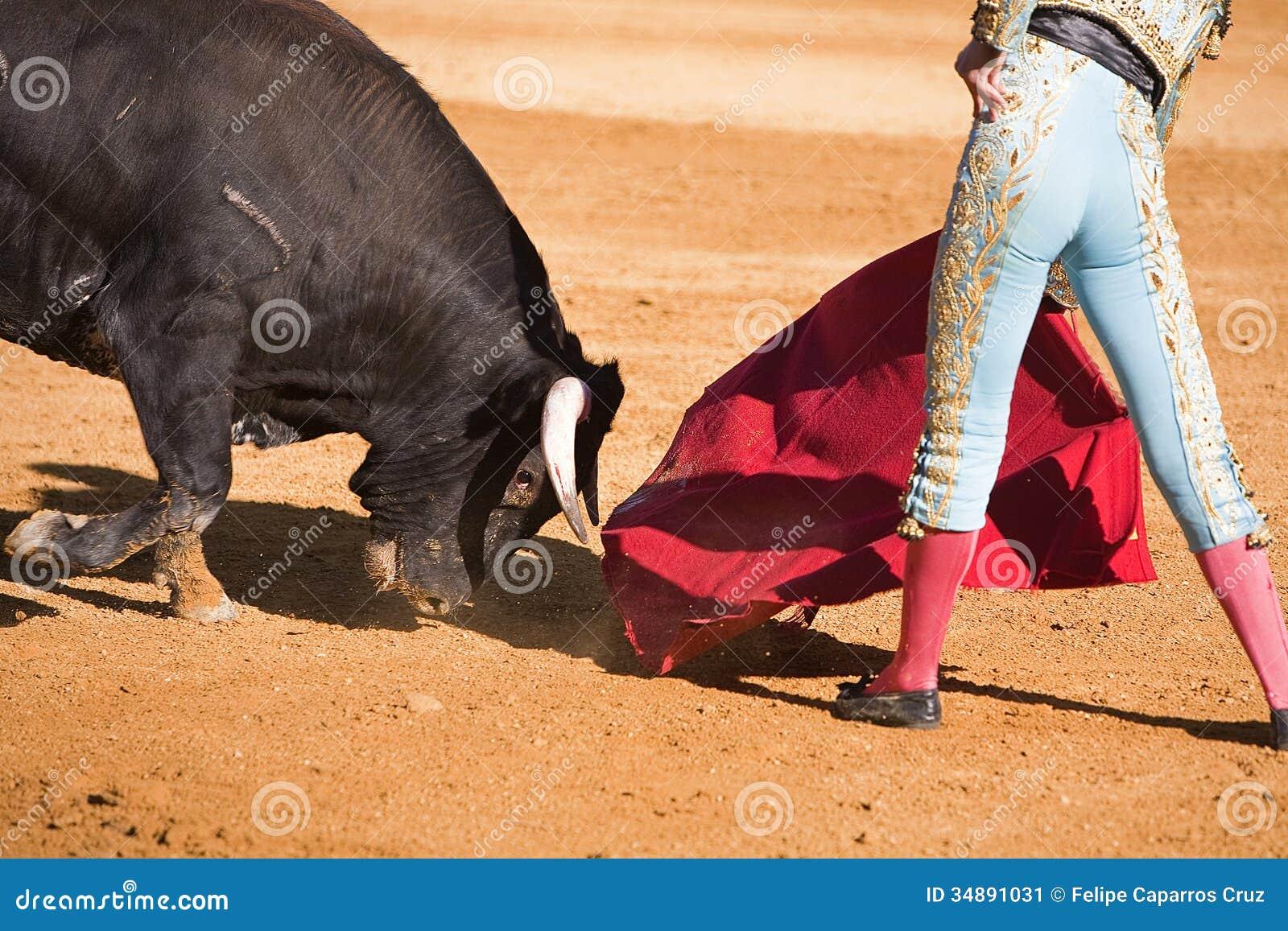 Torero con el cabo en la corrida