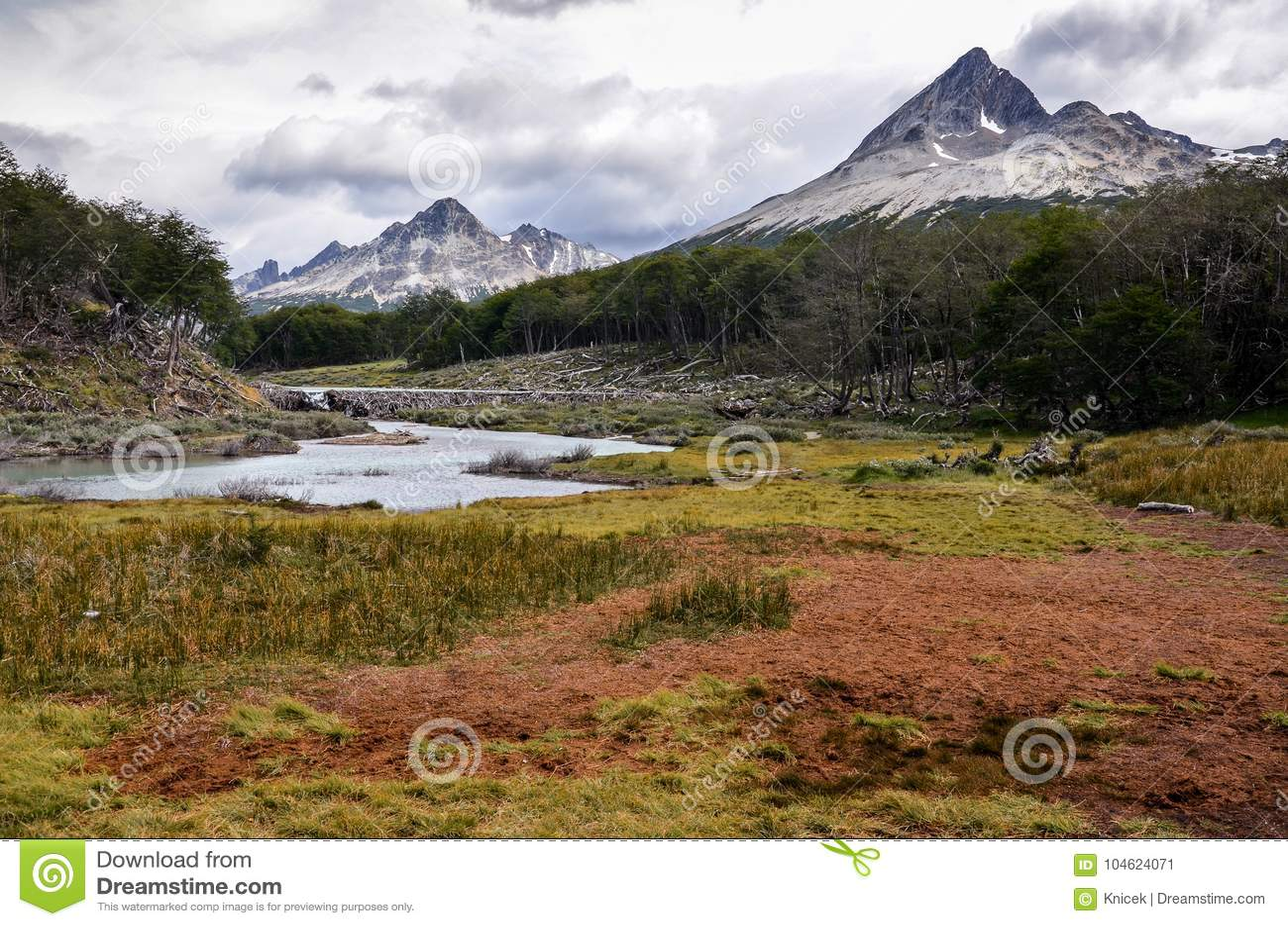 Torfmoor in Tierra del Fuego-Park nahe Ushuaia, Paragonia, Argentinien