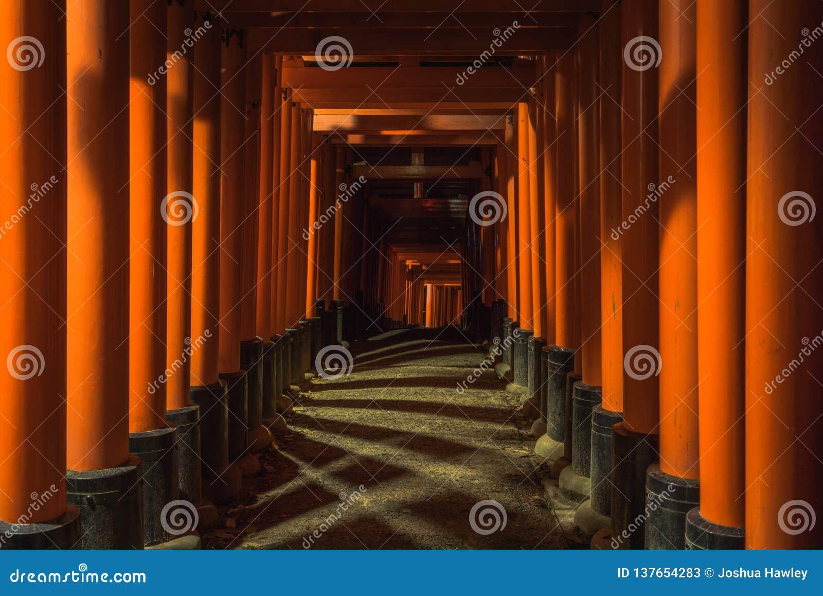 Torii cienie przy świątynią w Kyoto