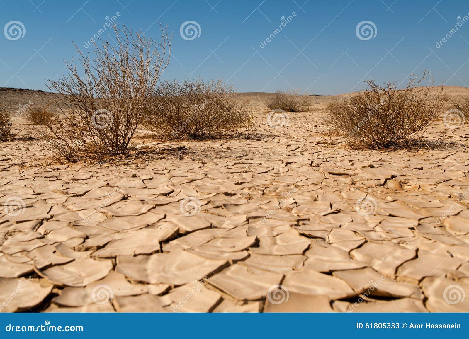 Torka och omvandlande till öken