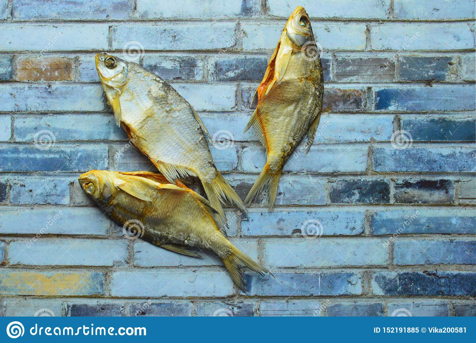 Torkad vobla för rimmad fisk på en grå bakgrund