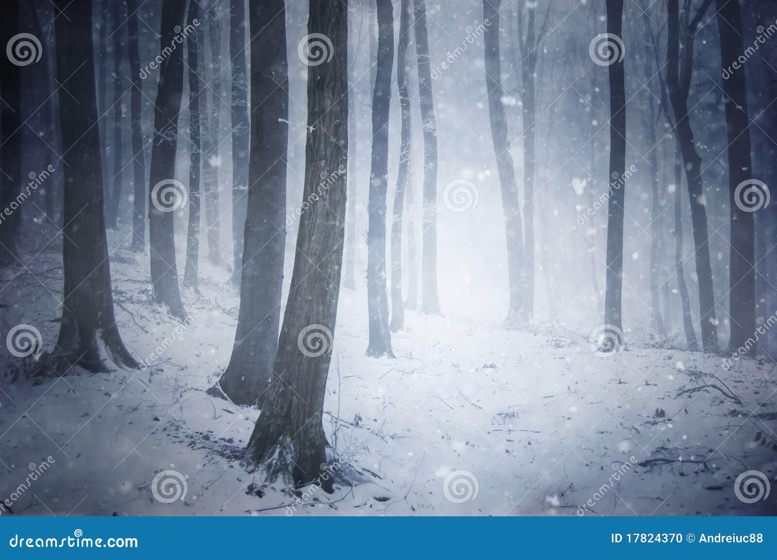 Tormenta de la nieve del invierno en un bosque con th que sopla del viento