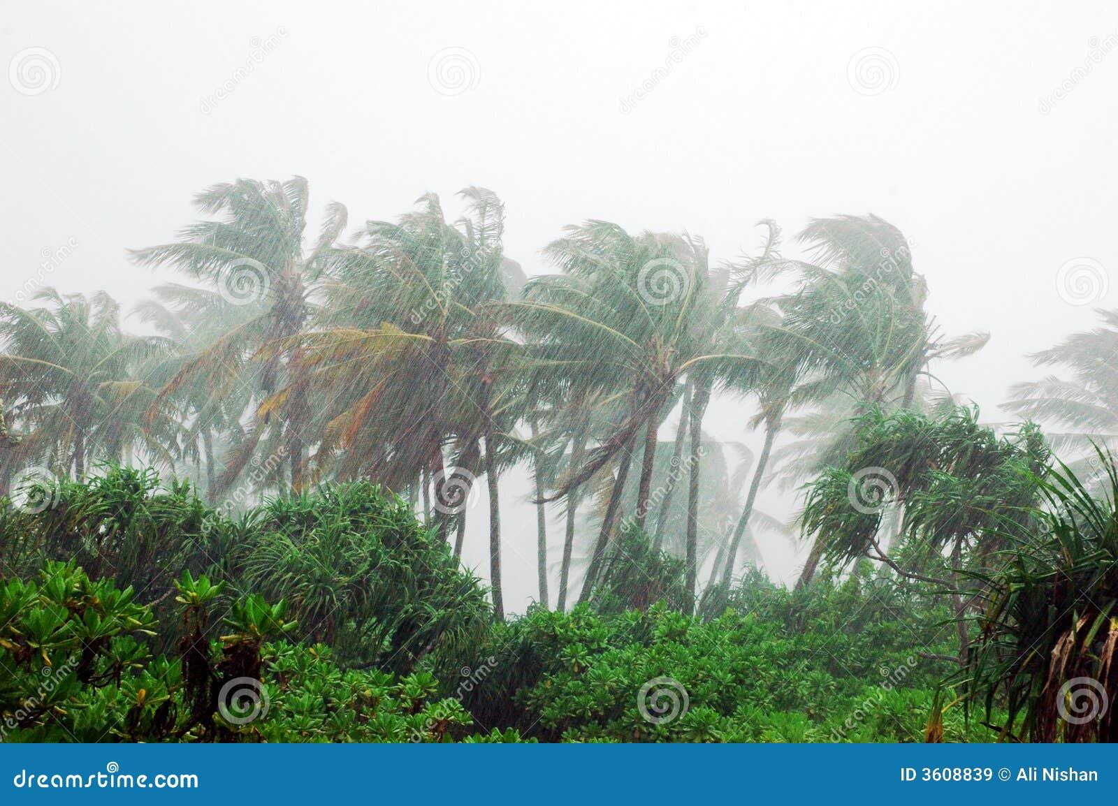 Tormenta en la isla tropical