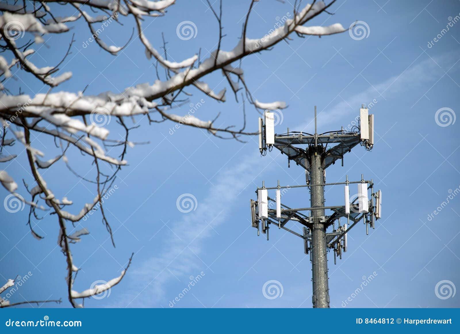 Torn för telefon för filial cell inramnintt snöig