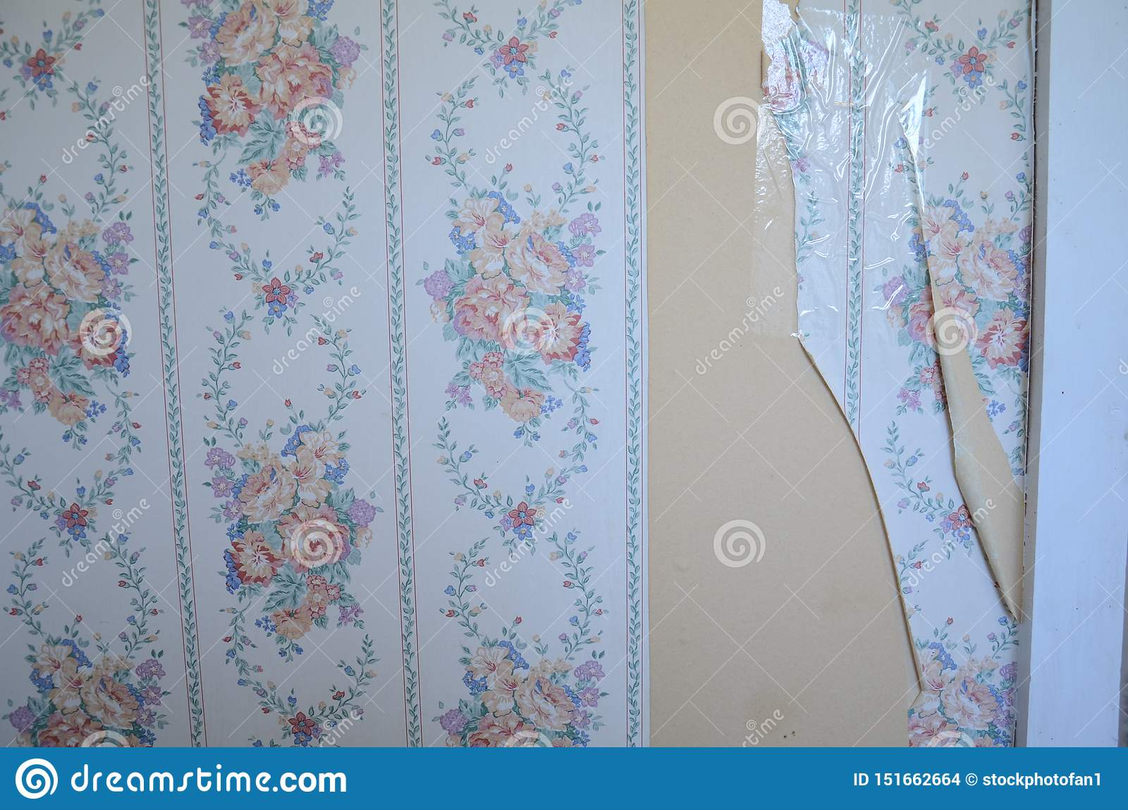 Torn And Taped White Flower Wallpaper On Wall Stock Photo