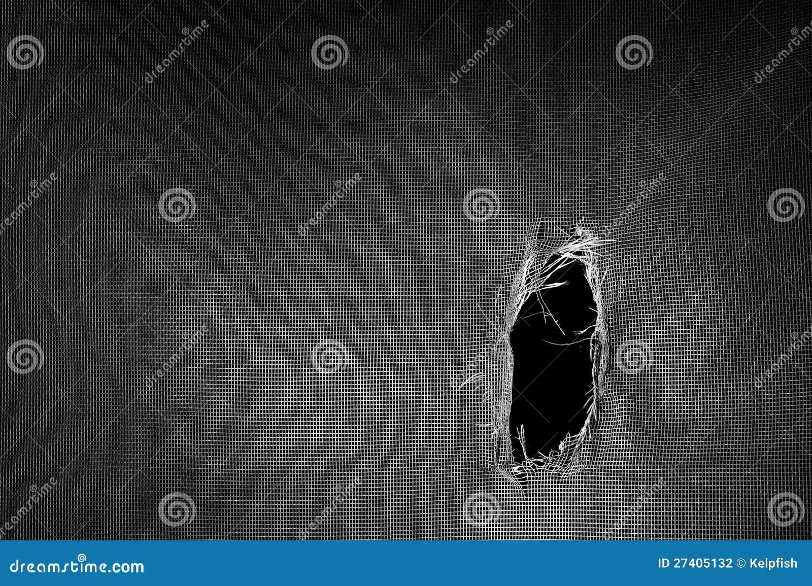 Torn window screen