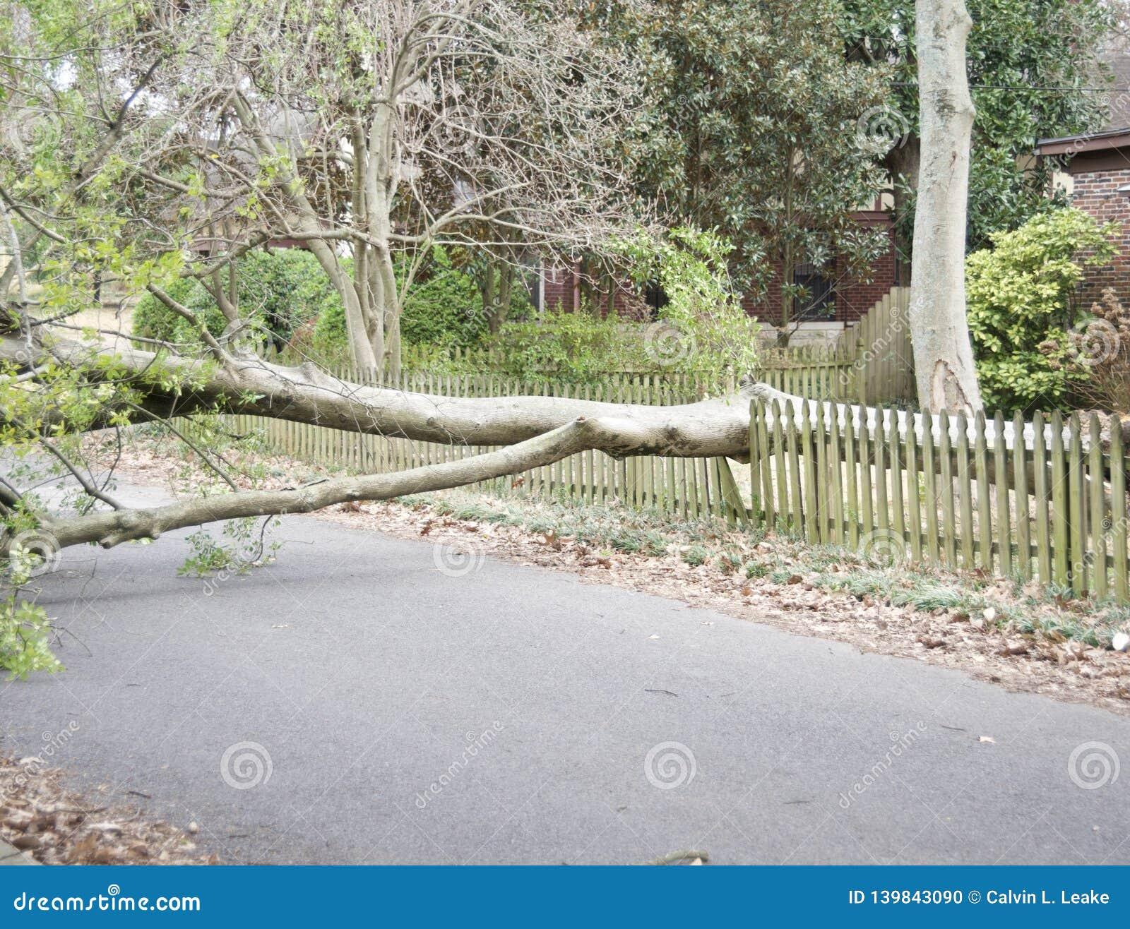 Tornando Beschadigd Huis en Bezit