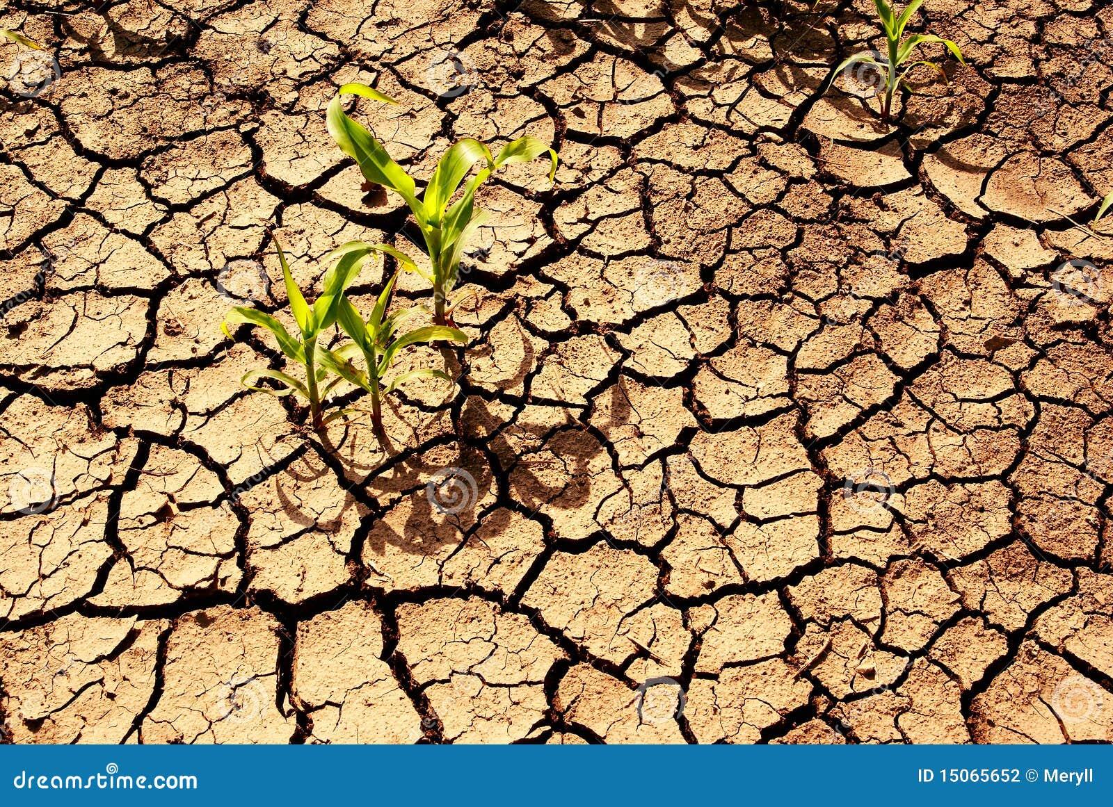 Torr jord för torka