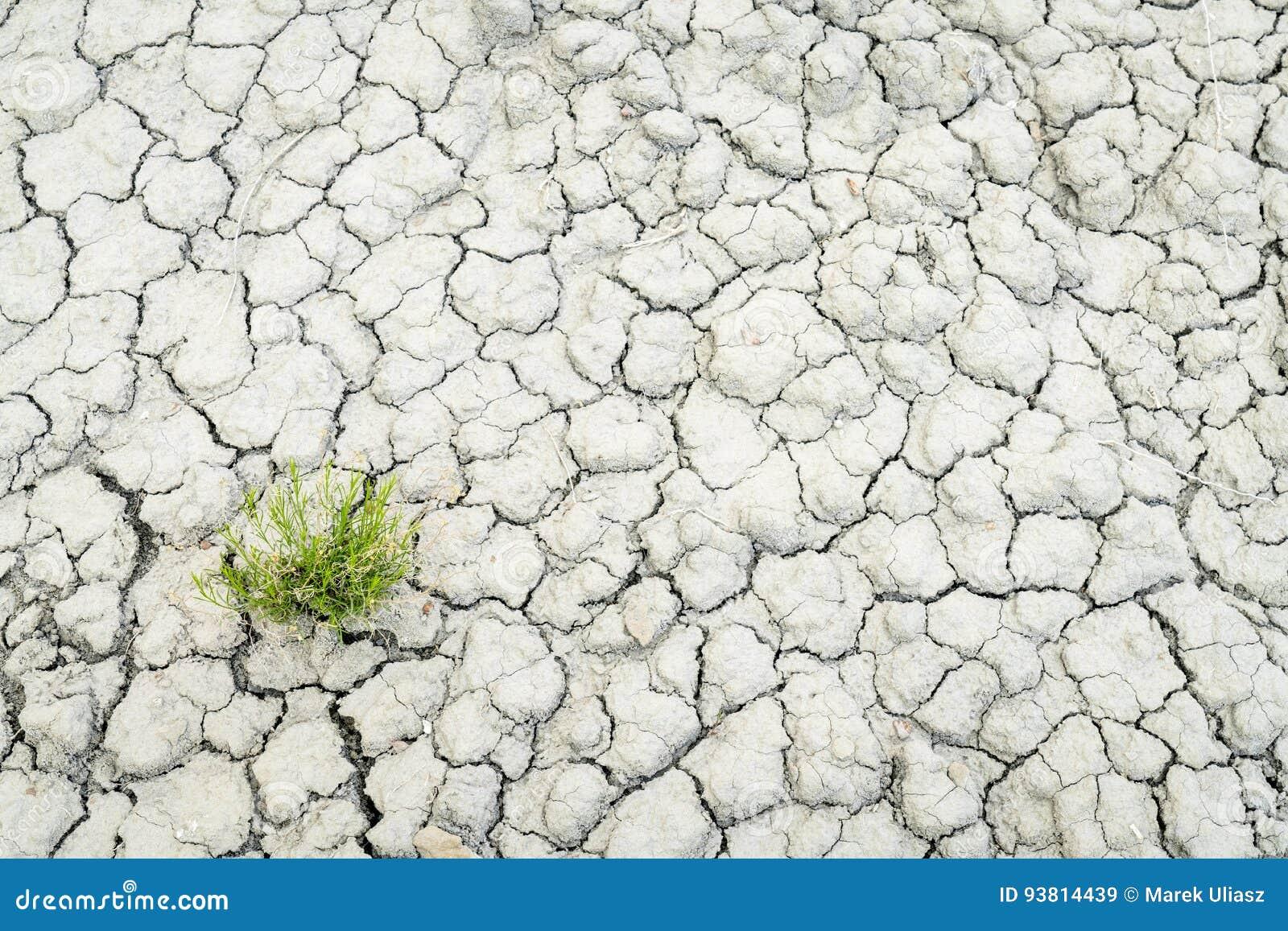 Torr och sprucken backgroiund för ökenjord