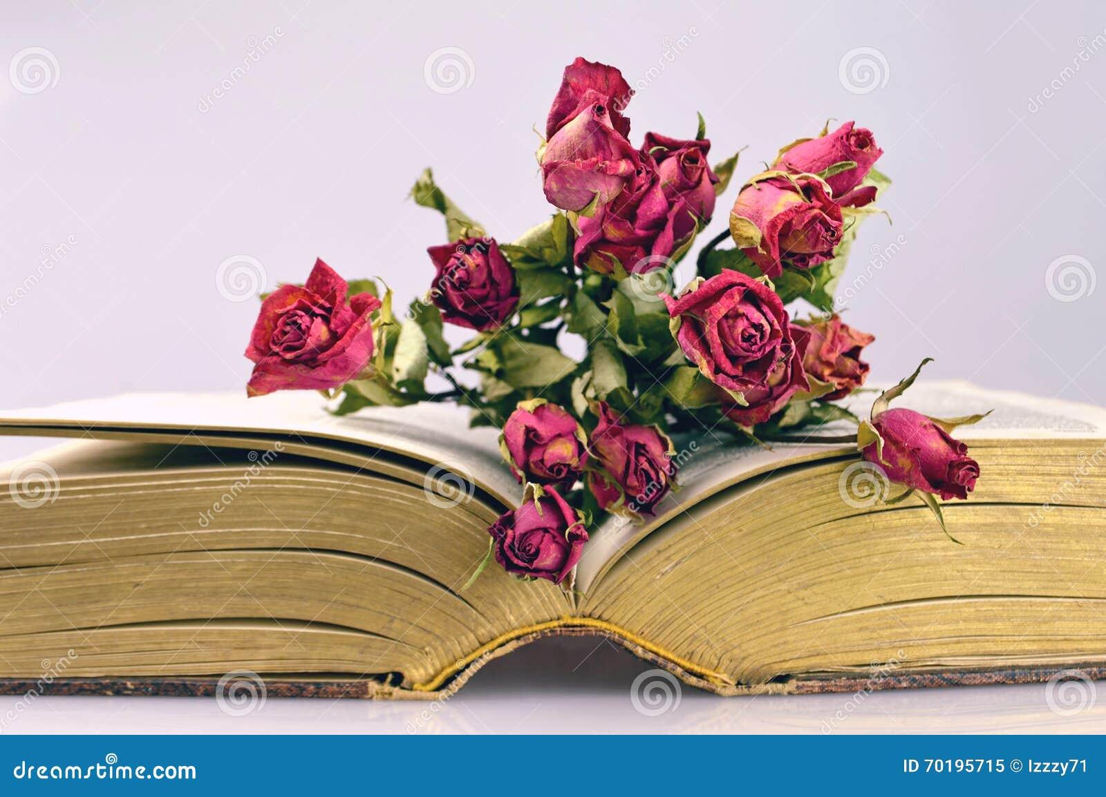 Torra rosor och en gammal bok