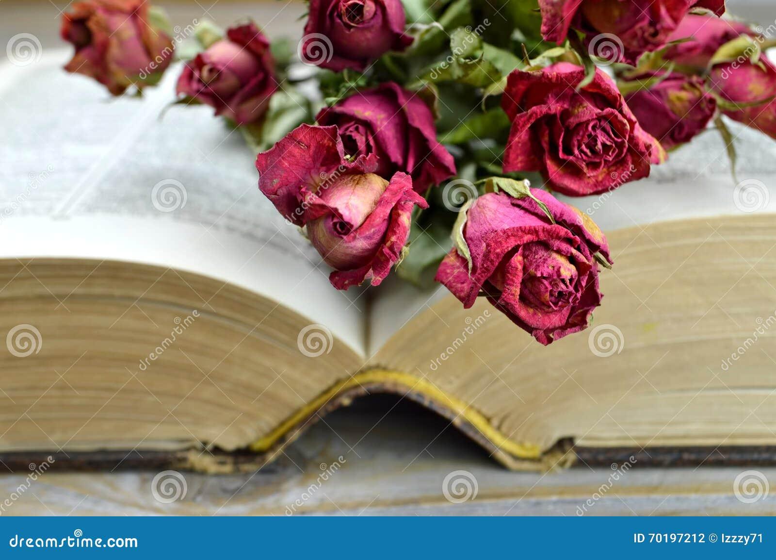 Torra rosor på en öppen gammal bok