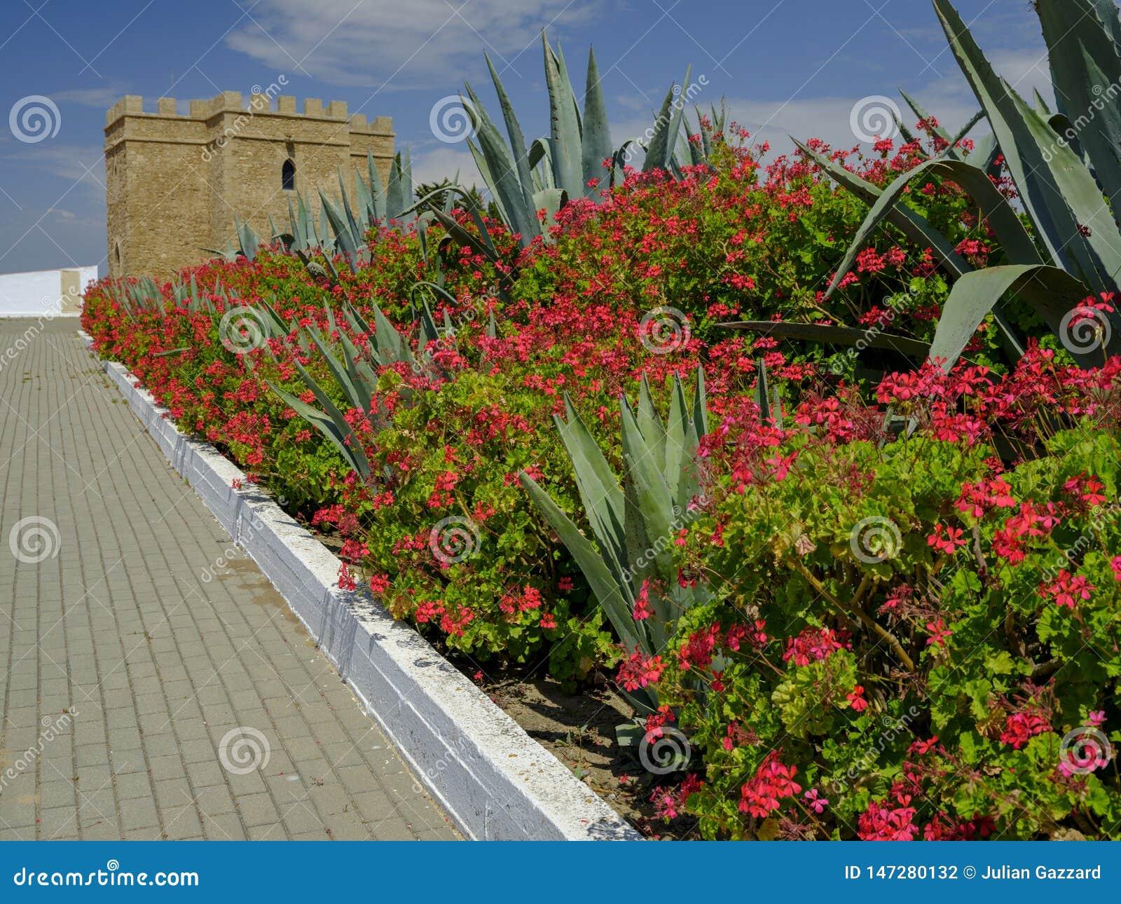 Torre Castillo de dona Blanca e giardini