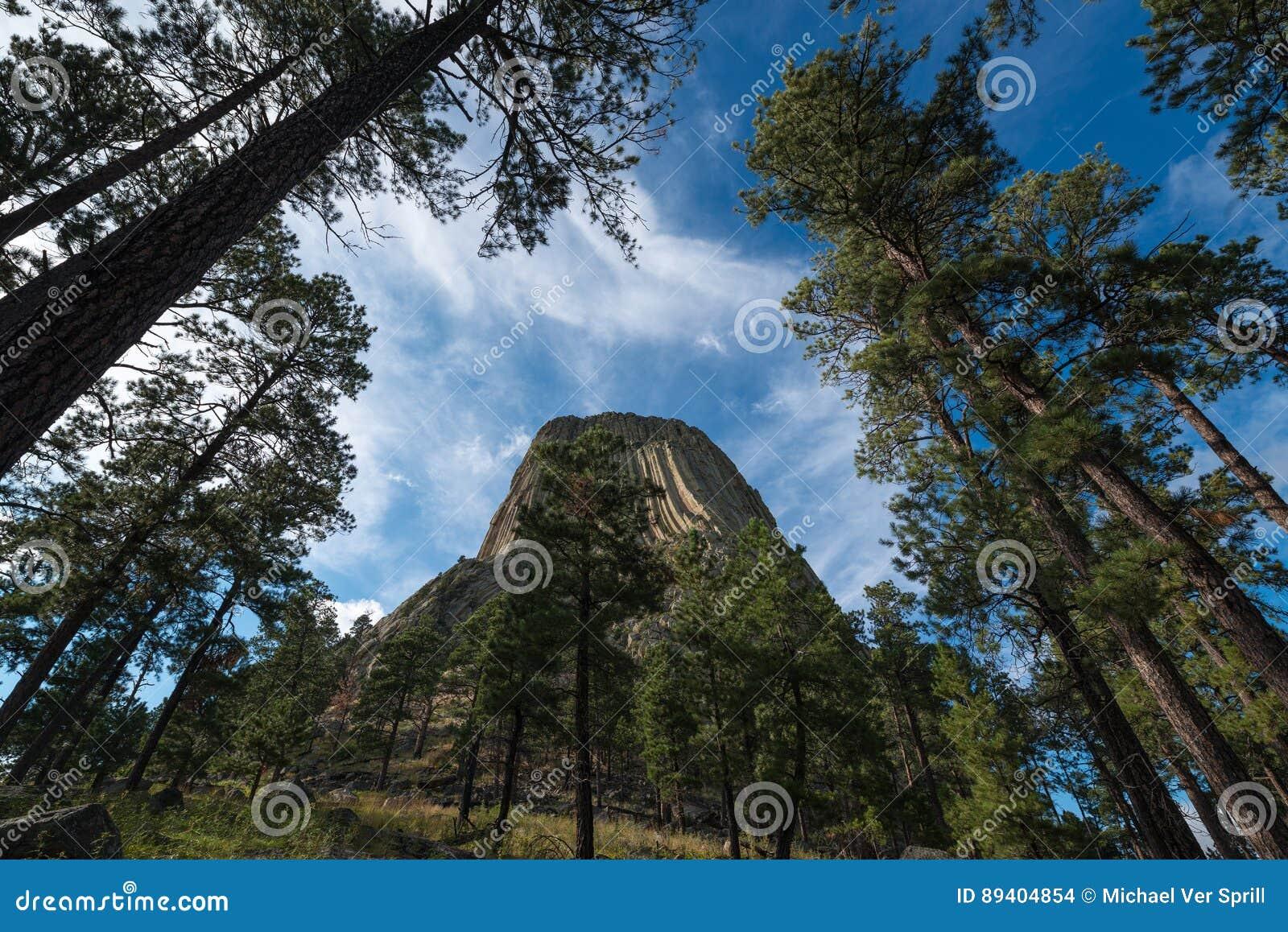 Torre dos diabos através das árvores