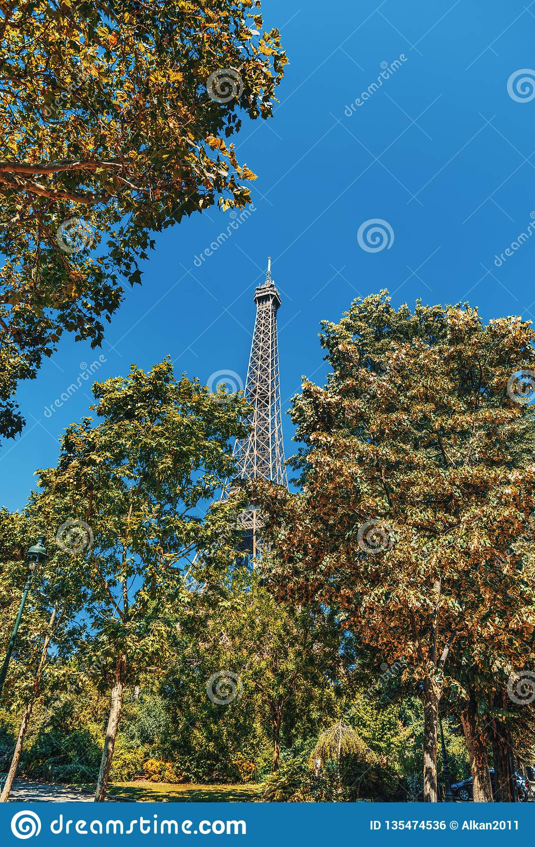 Torre Eiffel di fama mondiale circondata dagli alberi verdi