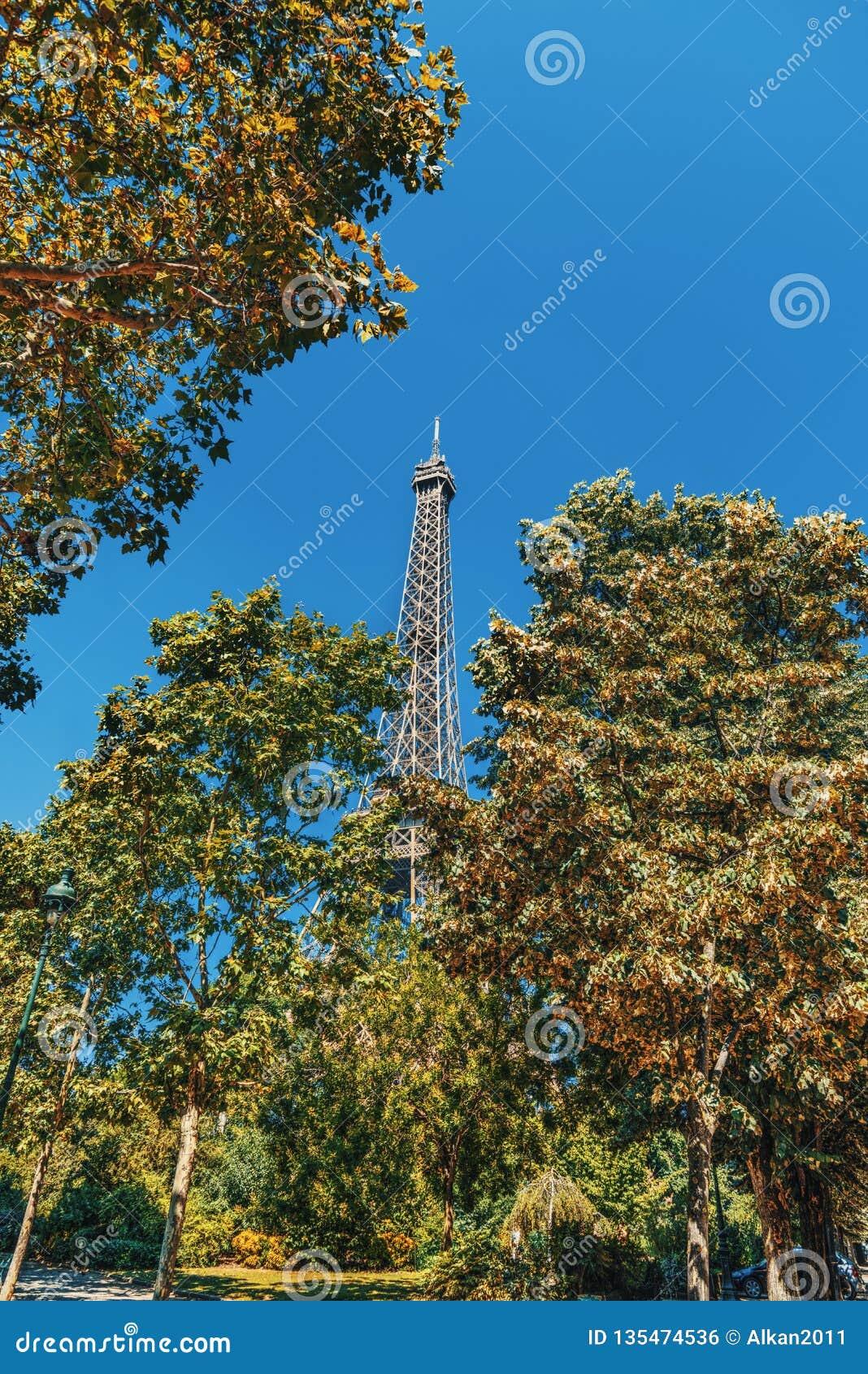 Torre Eiffel mundialmente famosa cercada por árvores verdes