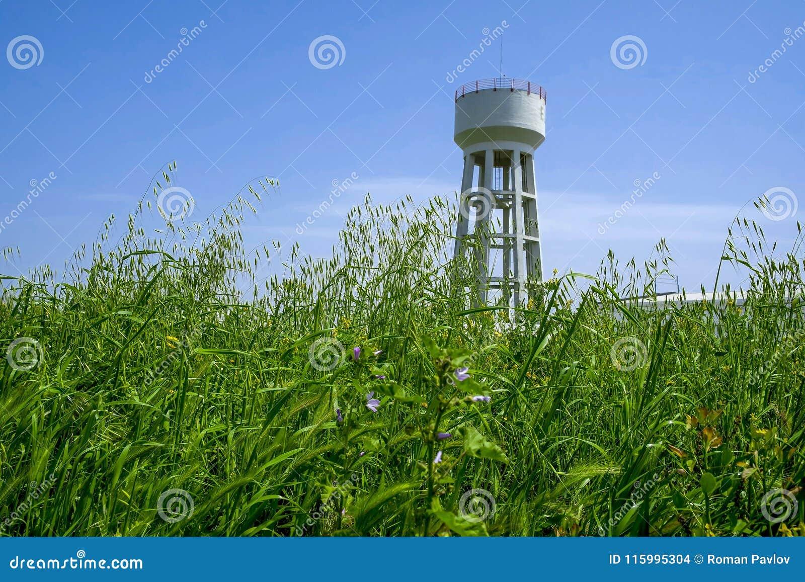 Torre na grama