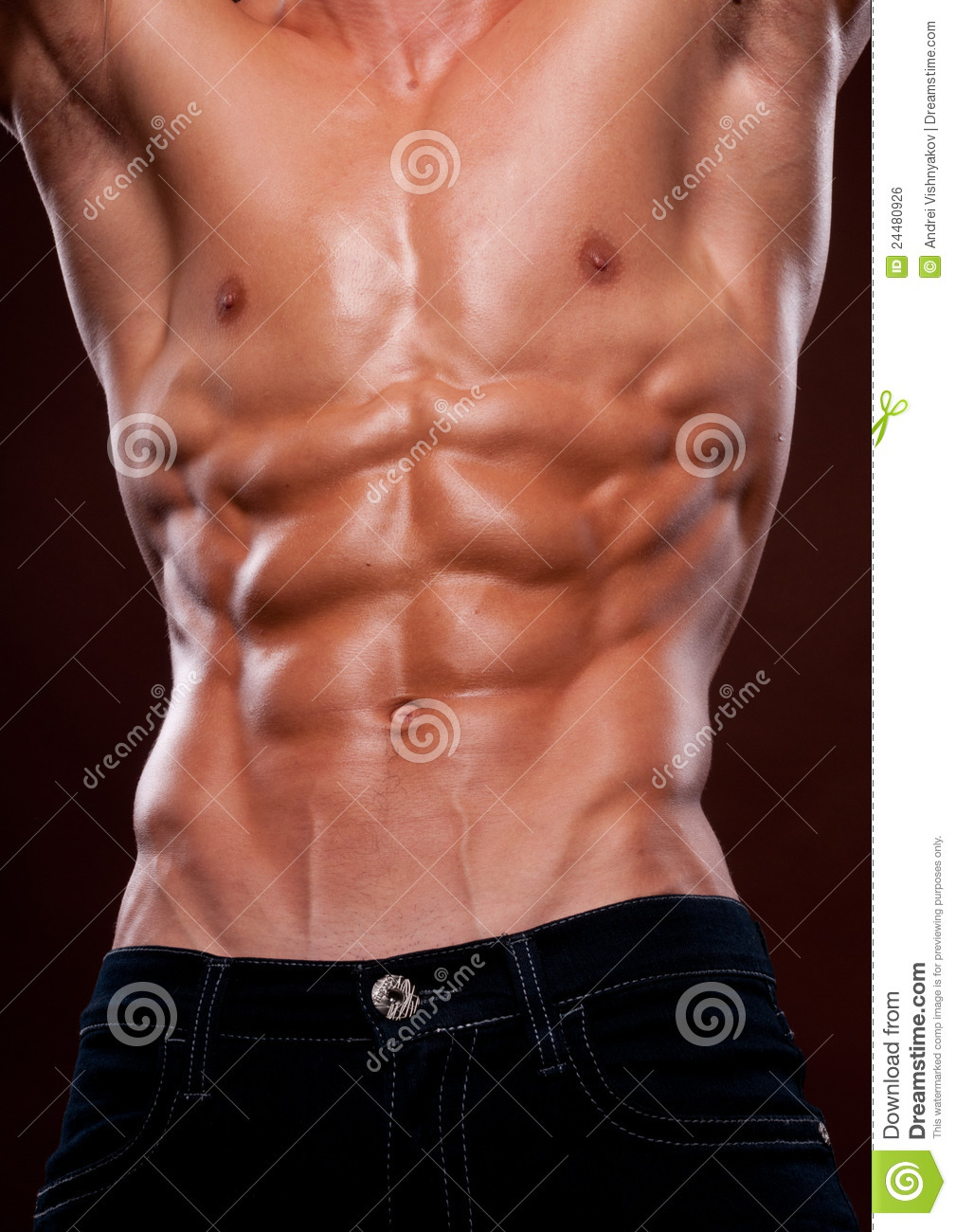 Torso Six Pack Stock Images - Download 6,638 Royalty Free
