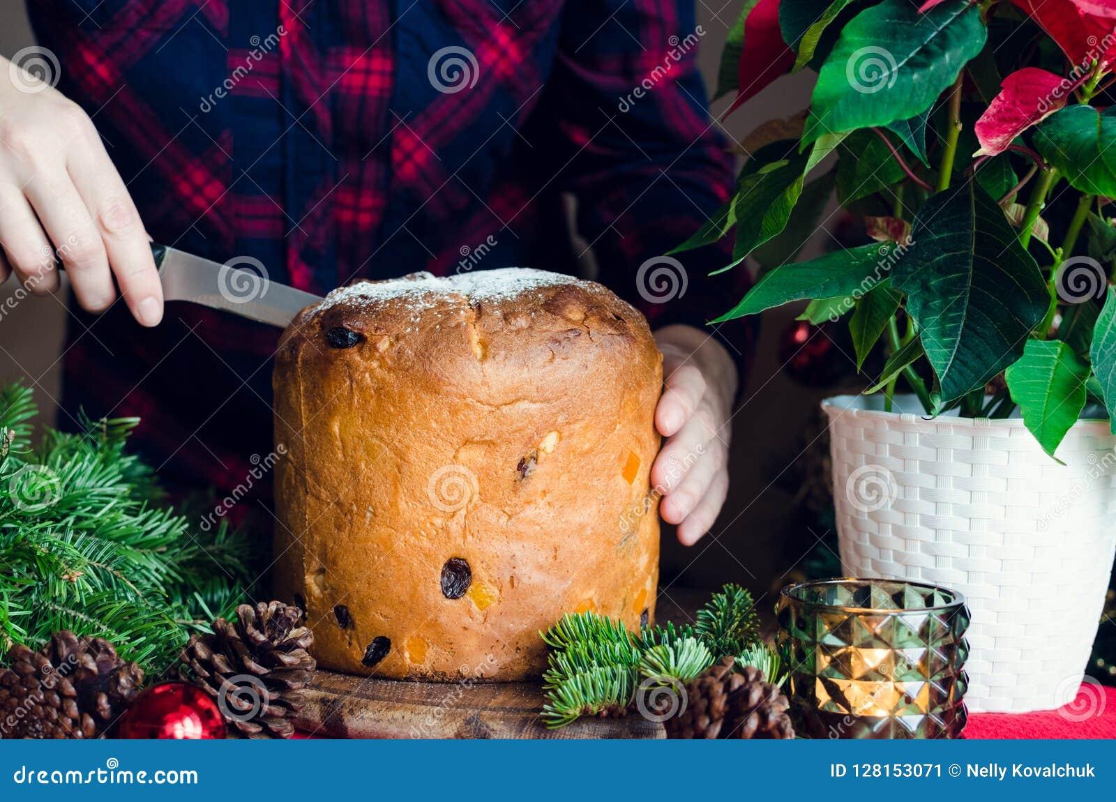 Torta italiana tradicional del panettone para la Navidad