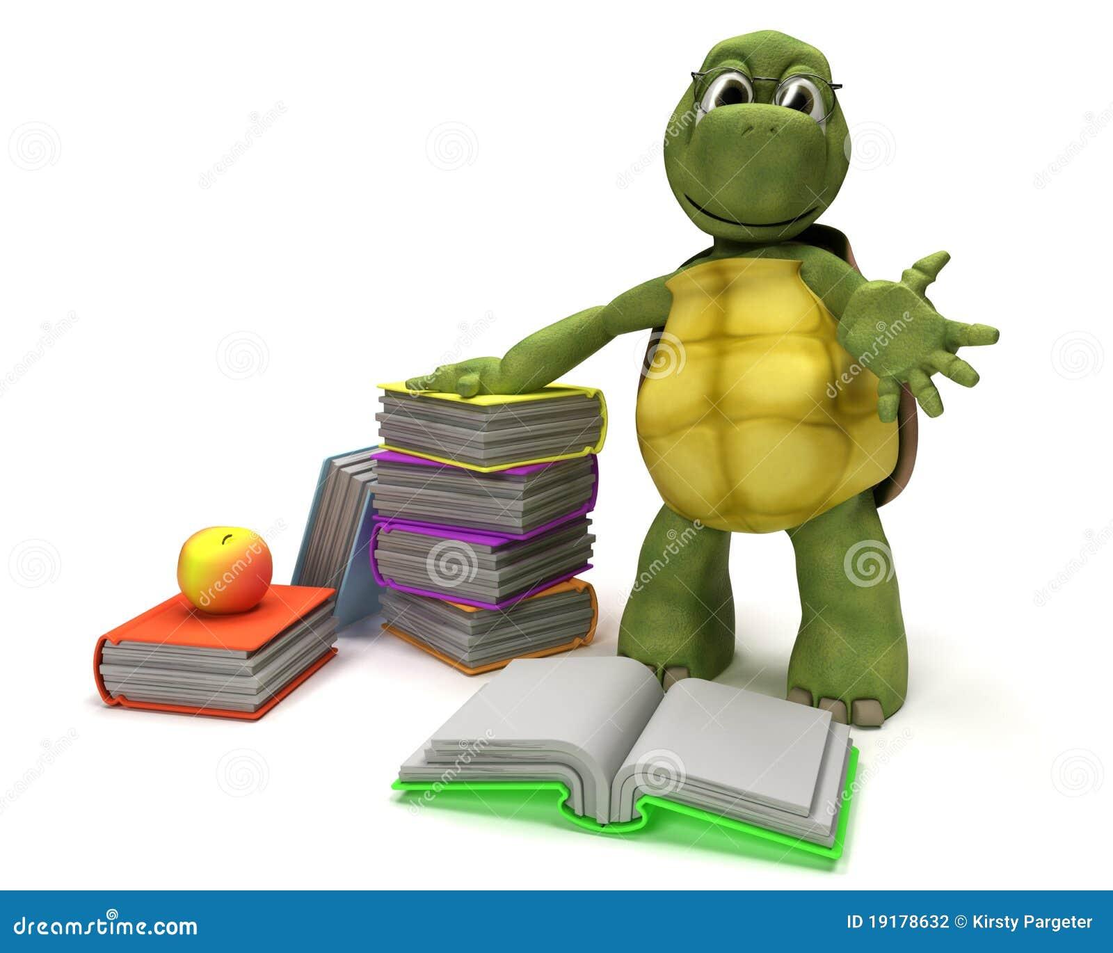 Tortoise Reading Book Stock Illustrations – 26 Tortoise Reading Book ...