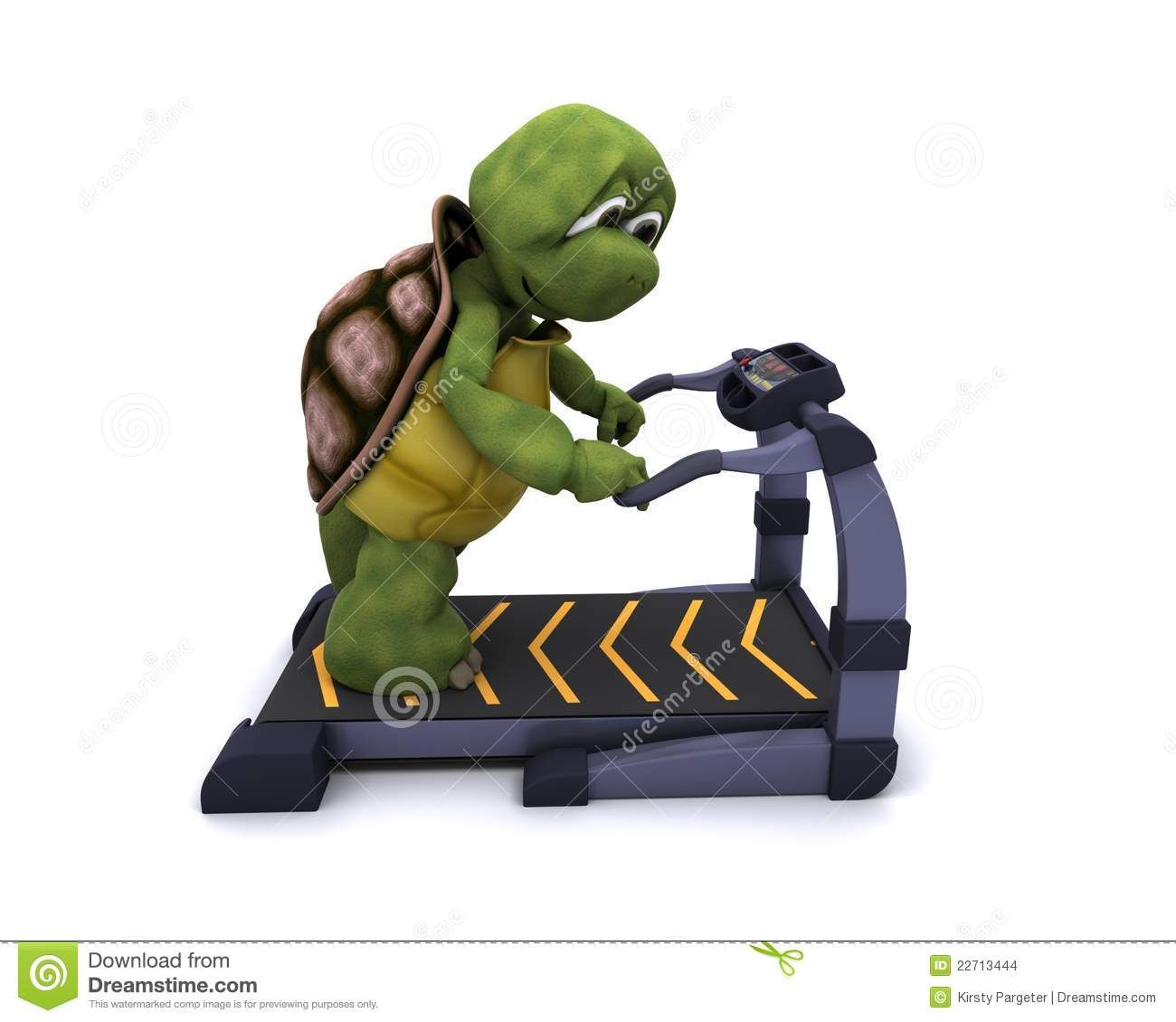 Tortoise Running On A Treadmill Stock Images Image 22713444
