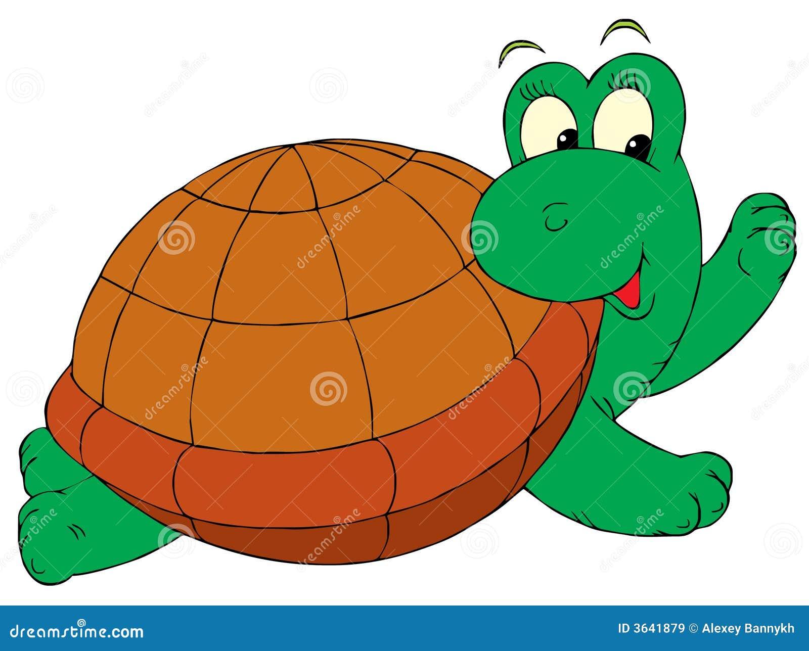 Tortue clip art de vecteur illustration de vecteur illustration du album clip 3641879 - Clipart tortue ...