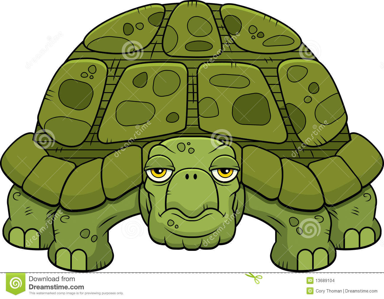 Tortue de dessin anim illustration de vecteur illustration du vert 13689104 - Dessins tortue ...