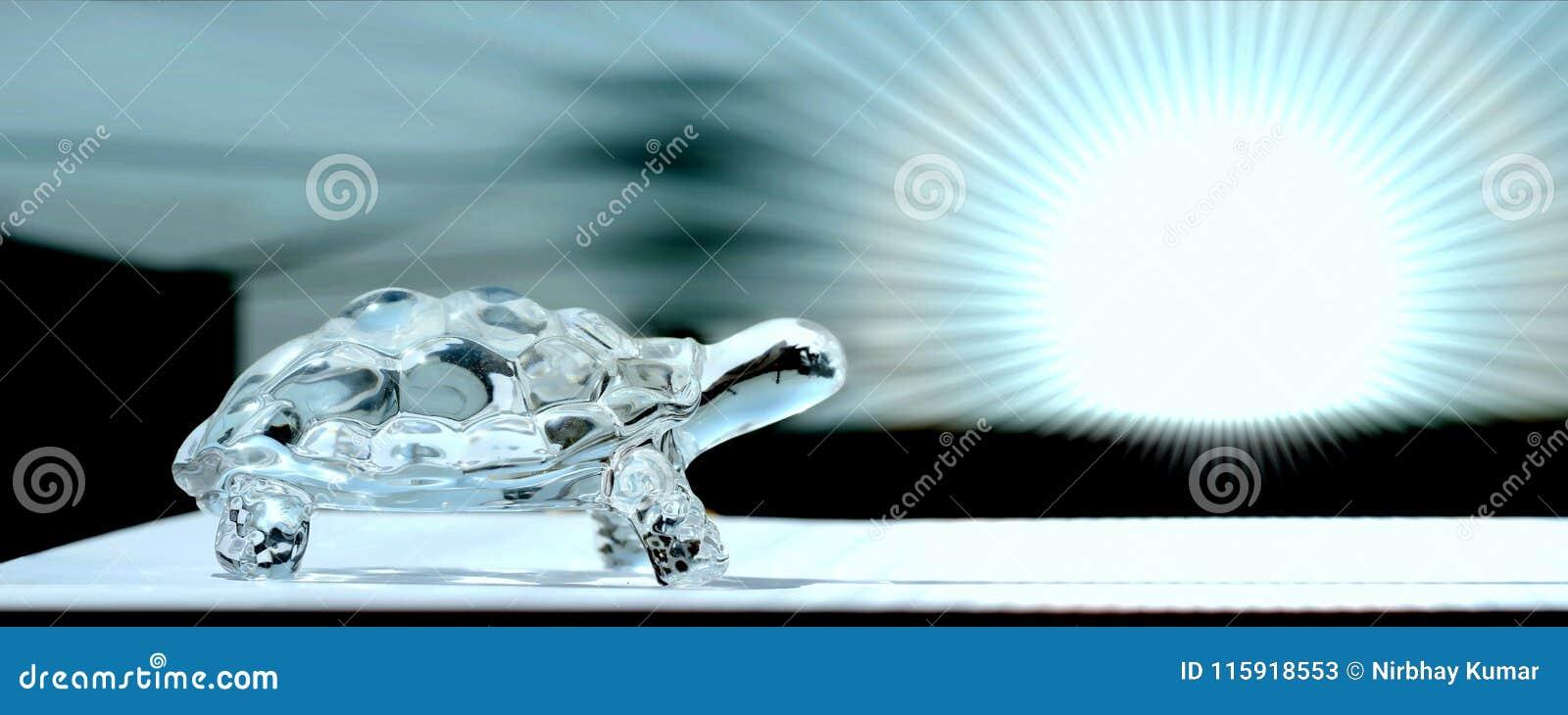 Tortue en verre à l arrière-plan bleu lumineux