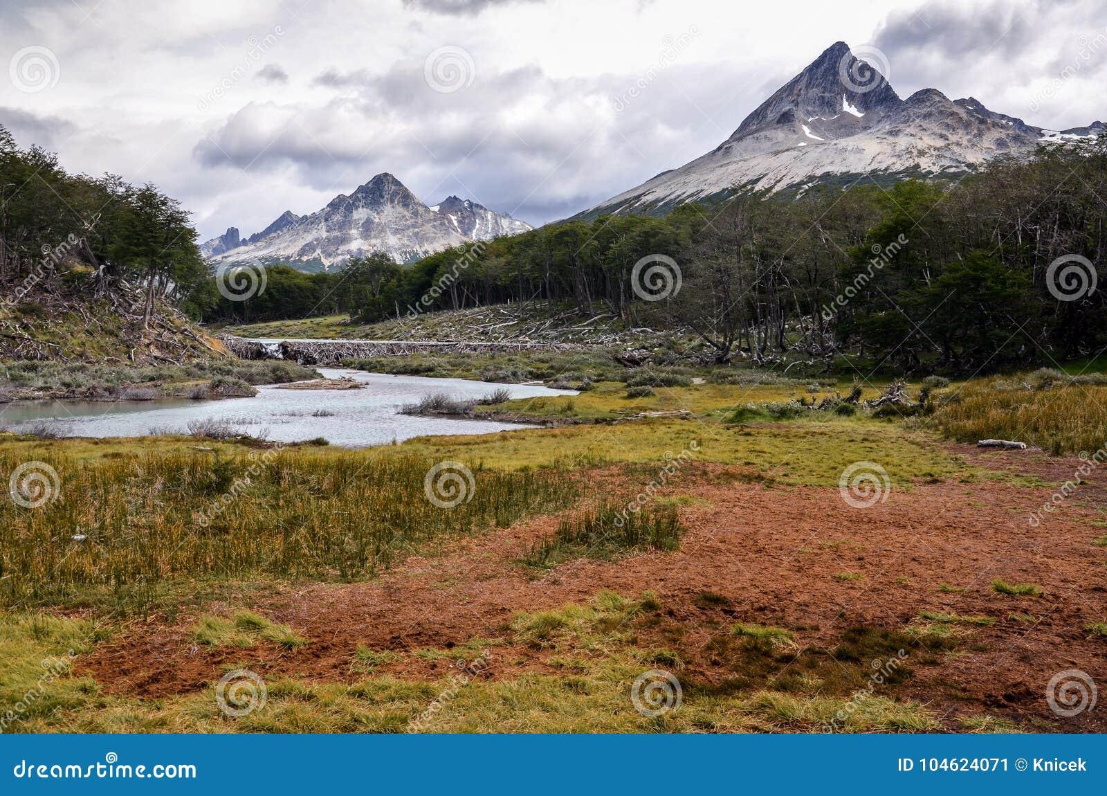 Torvmyren i Tierra del Fuego parkerar nära Ushuaia, Paragonia, Argentina
