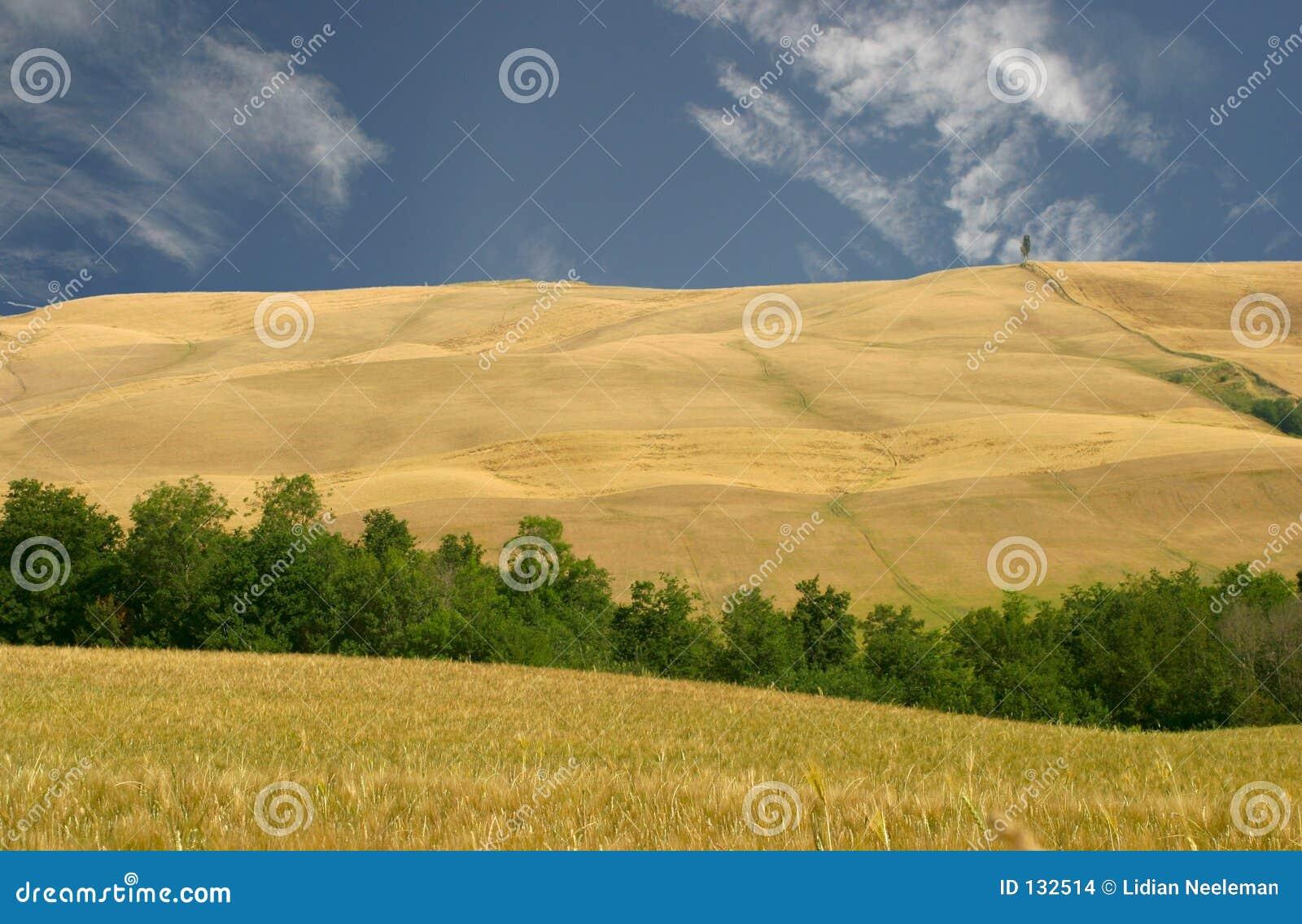 Toscânia, montes da região do Le crete