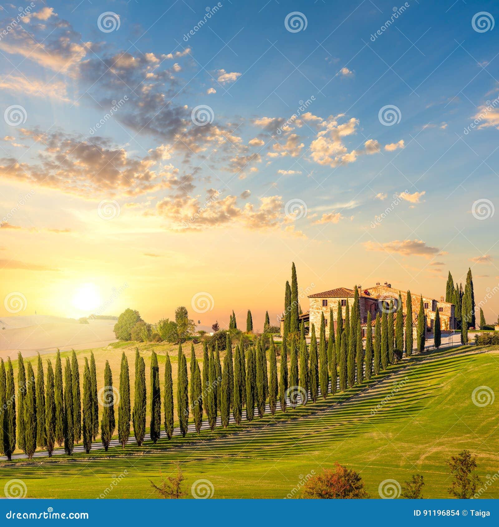 Toscânia no pôr do sol - estrada do campo com árvores e casa
