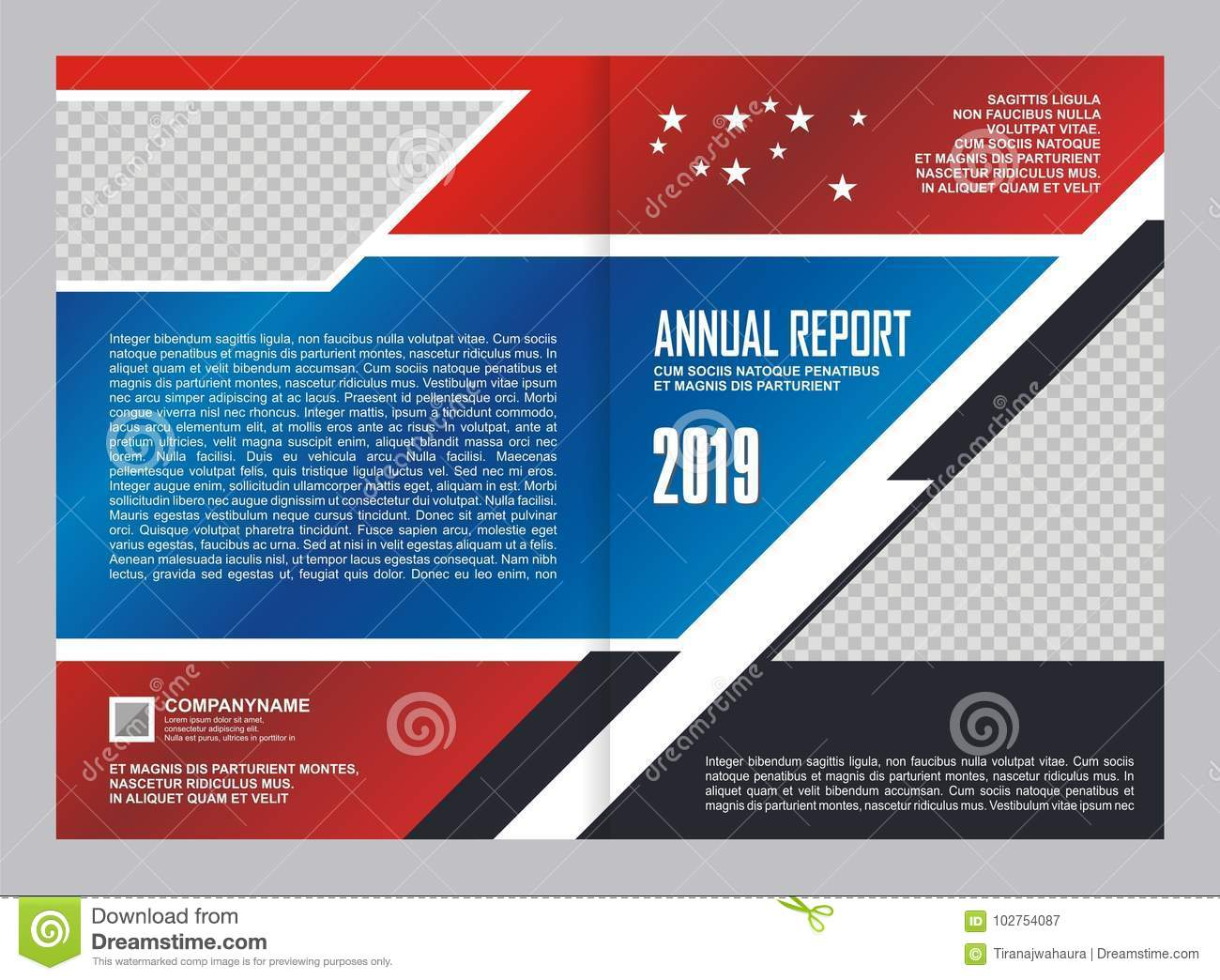 Annual Report Cover Template Design Stock Vector Illustration Of